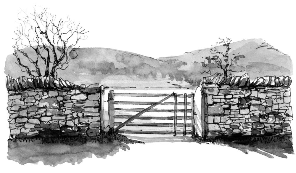 Illustration from The Grasmere Journal by Georgie Bennett