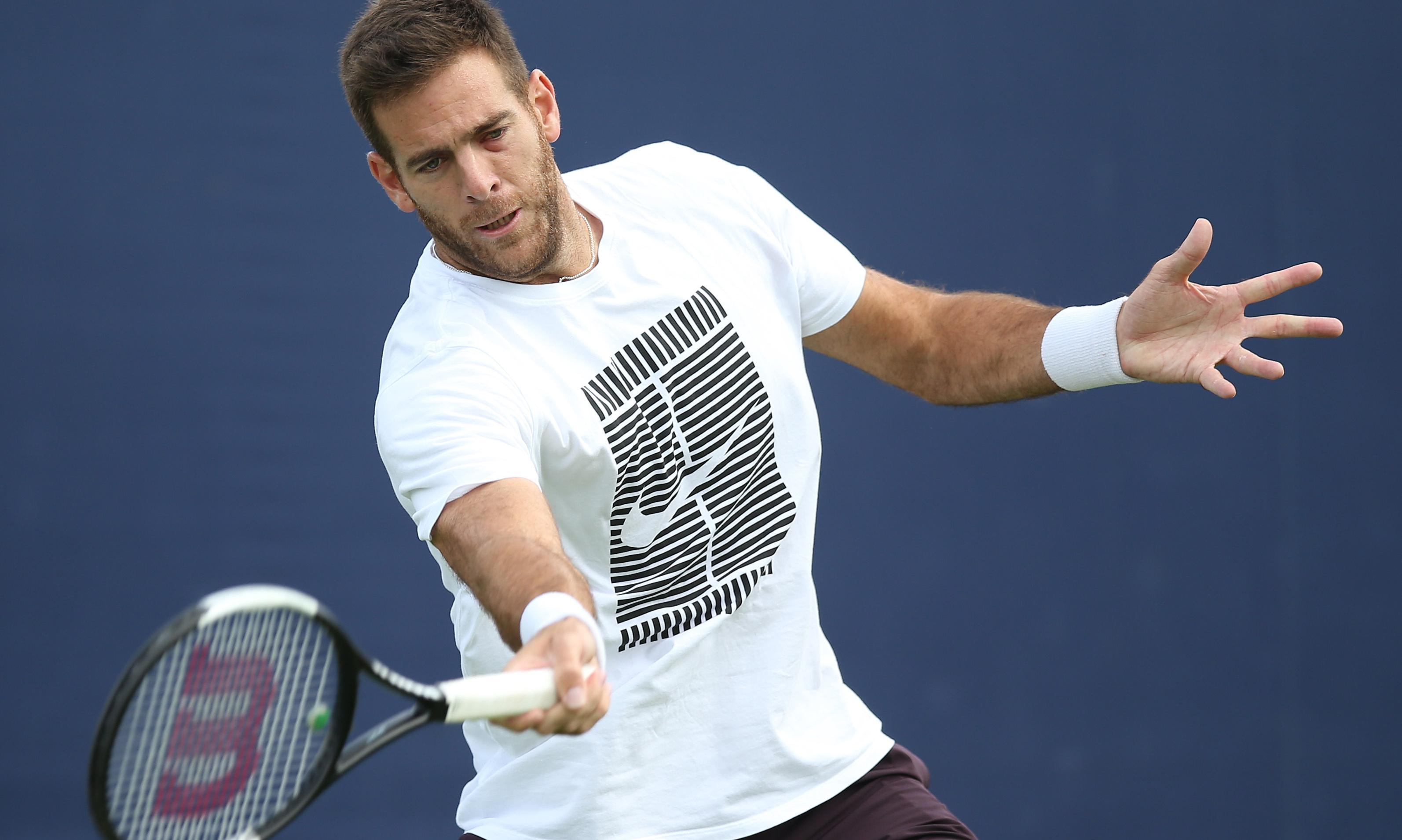 Andy Murray has the talent to make comeback, says Juan Martín del Potro