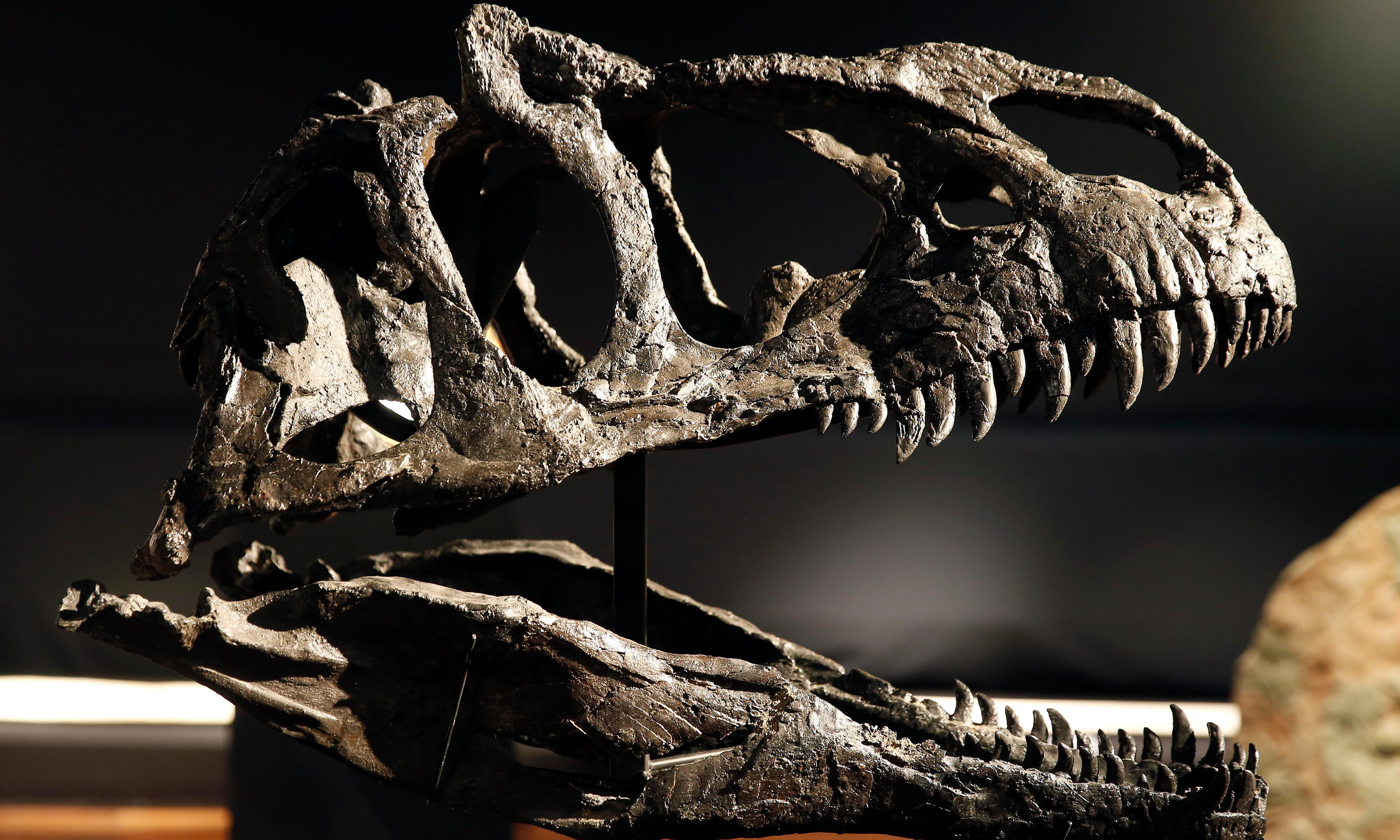 The Dinosaurs Rediscovered review – a transformation in our understanding