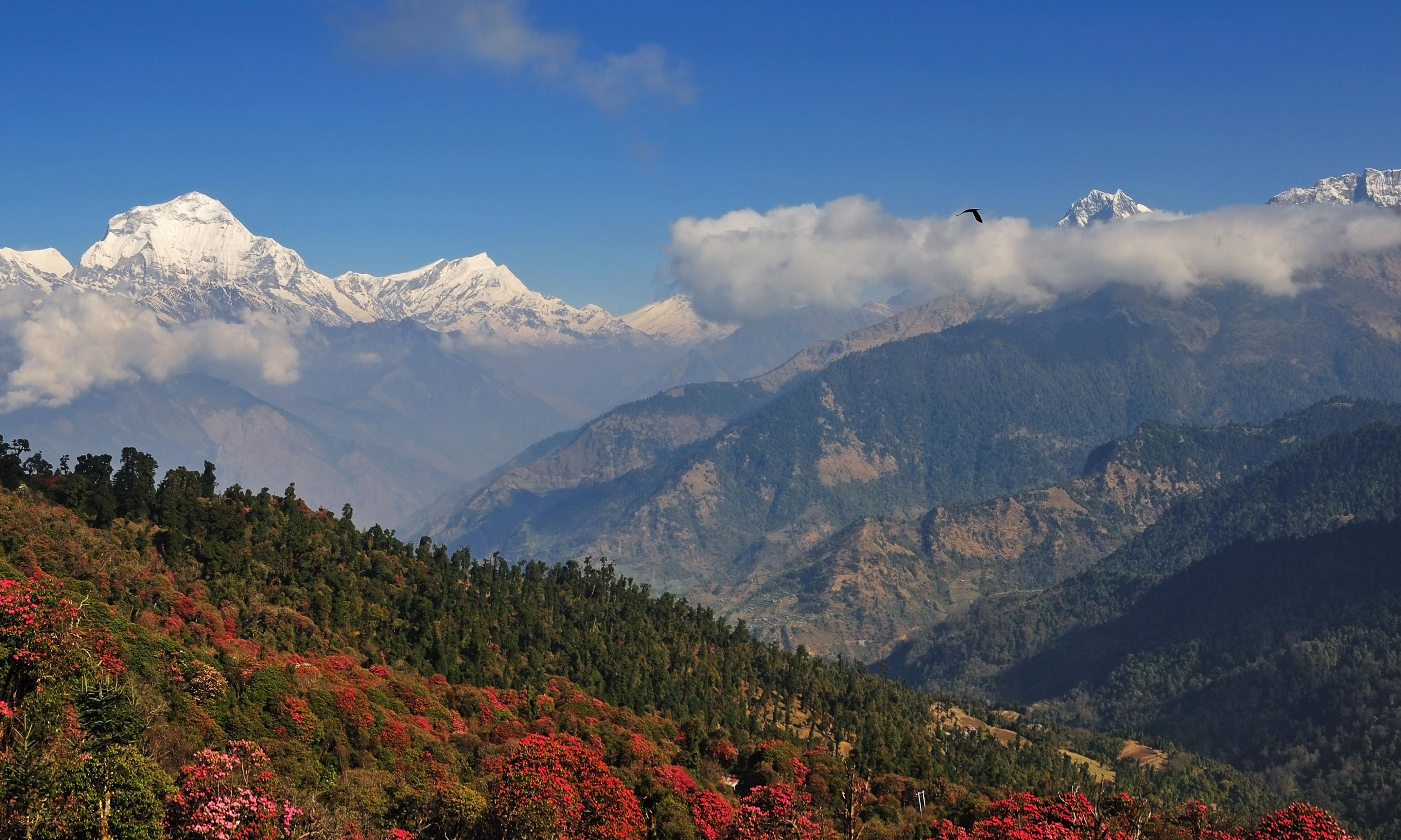 Himalayan highs … and lows: trekking in Nepal