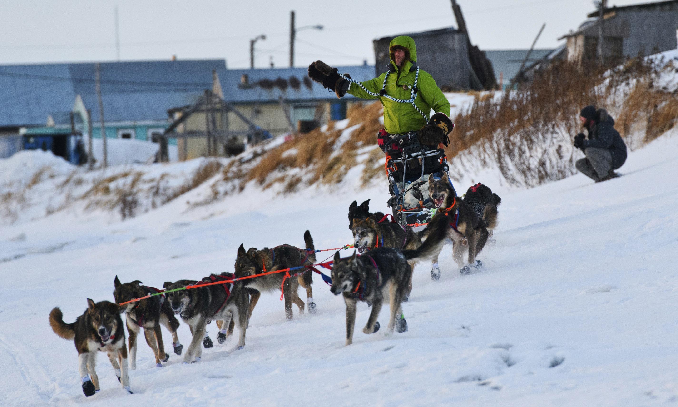 Musher loses huge lead in Alaska's Iditarod Race after dogs go on strike
