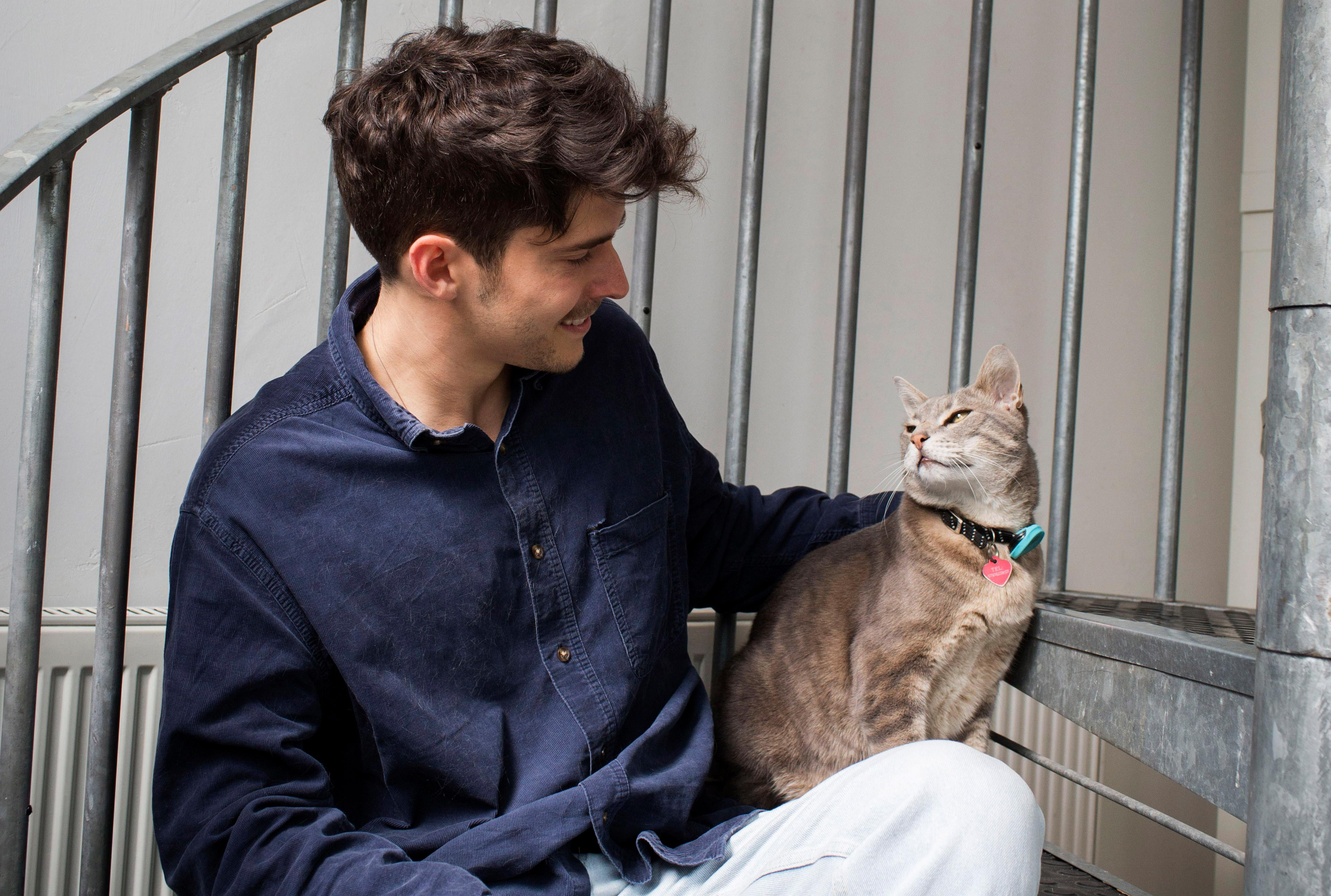 Experience: I'm a full-time cat sitter