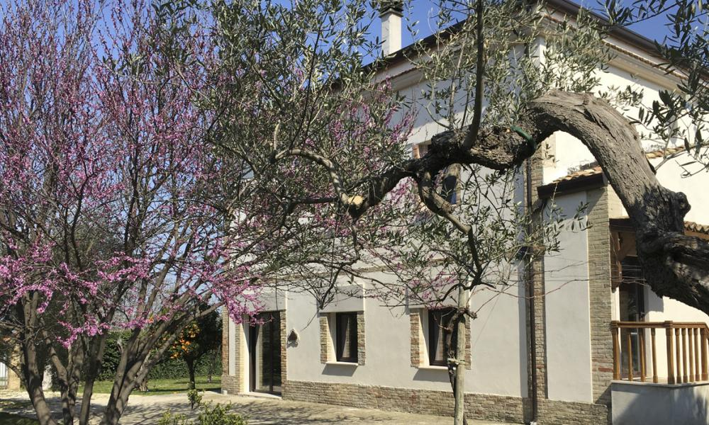 Parco dei Buoi is a peaceful organic farm with rooms