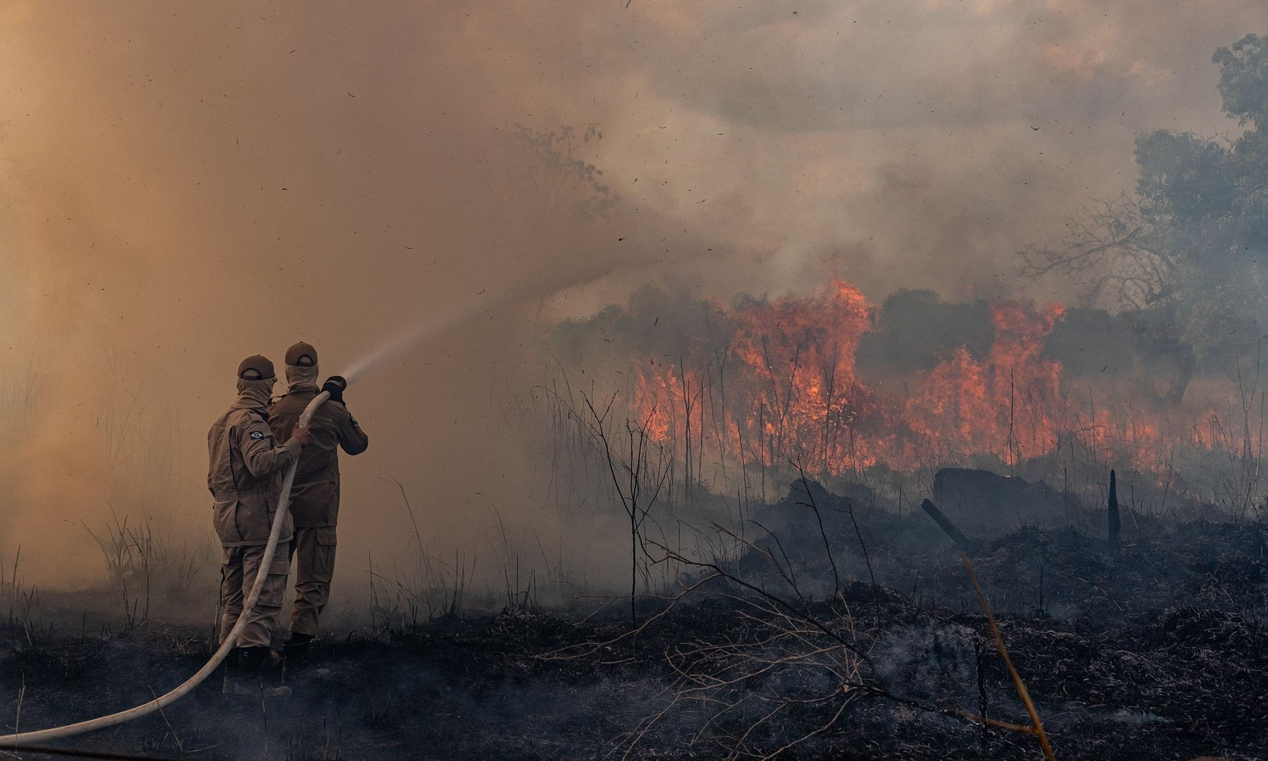 Do the Brazil Amazon fires justify environmental interventionism?
