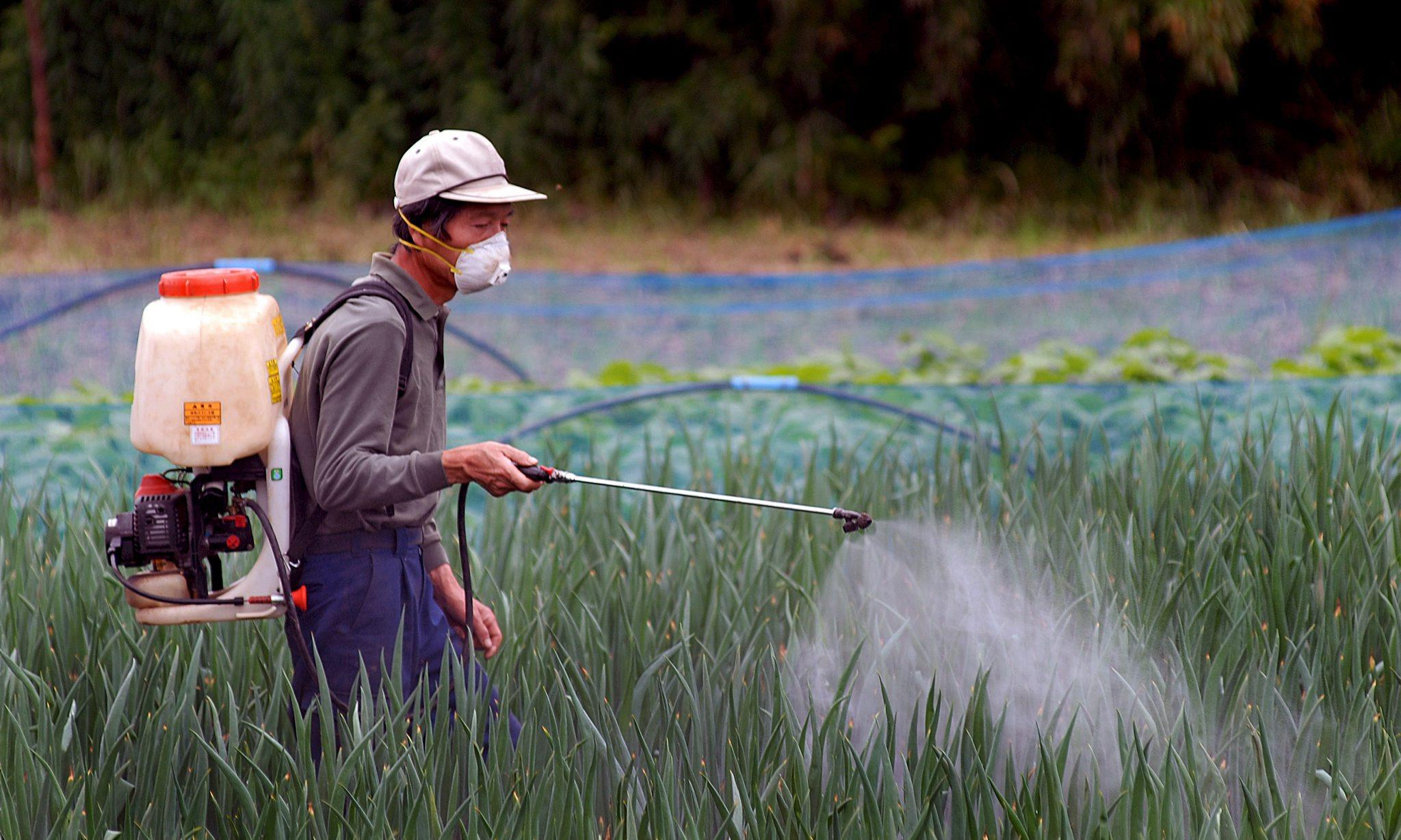 Fishery collapse 'confirms Silent Spring pesticide prophecy'