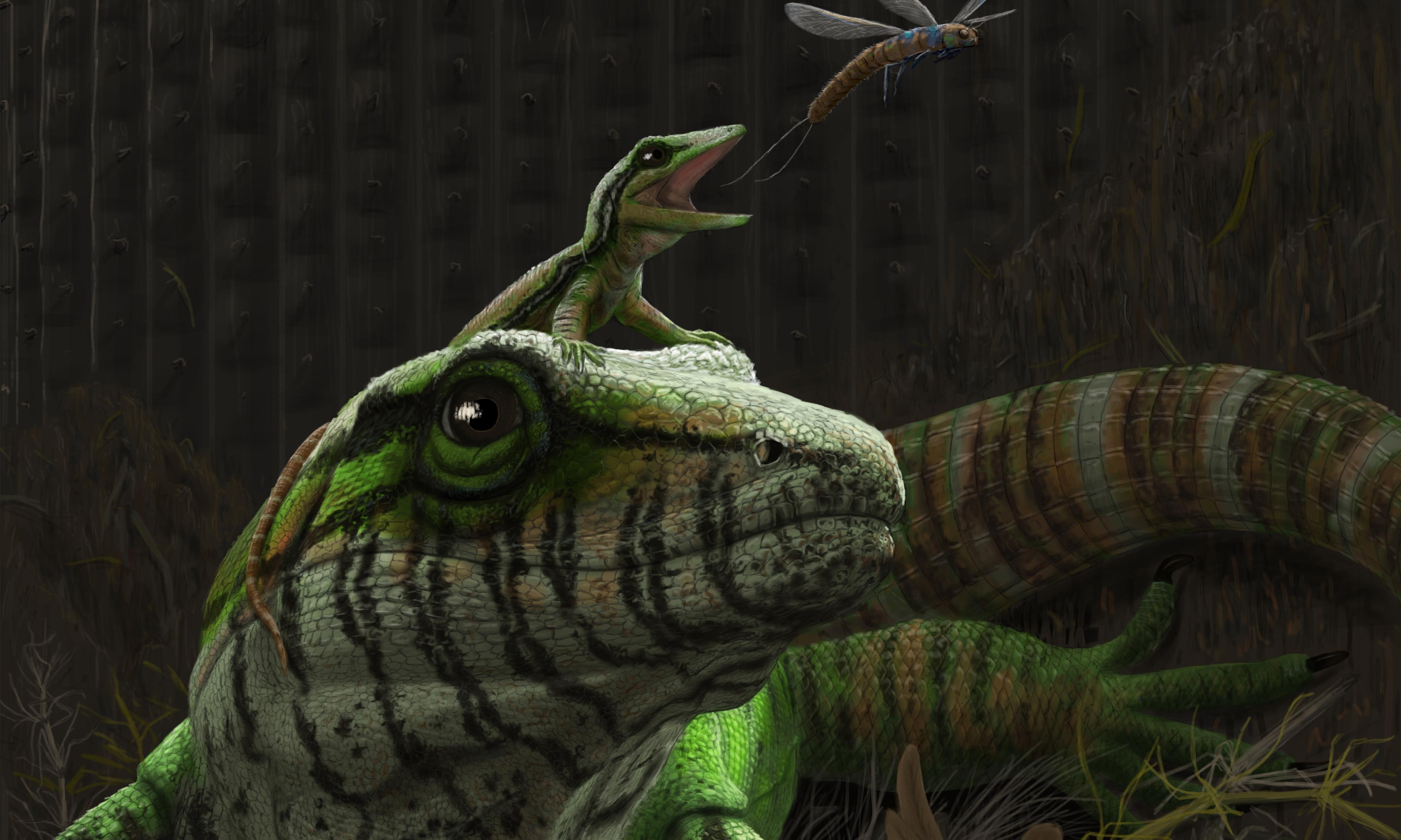 300m-year-old fossil is early sign of creatures caring for their young