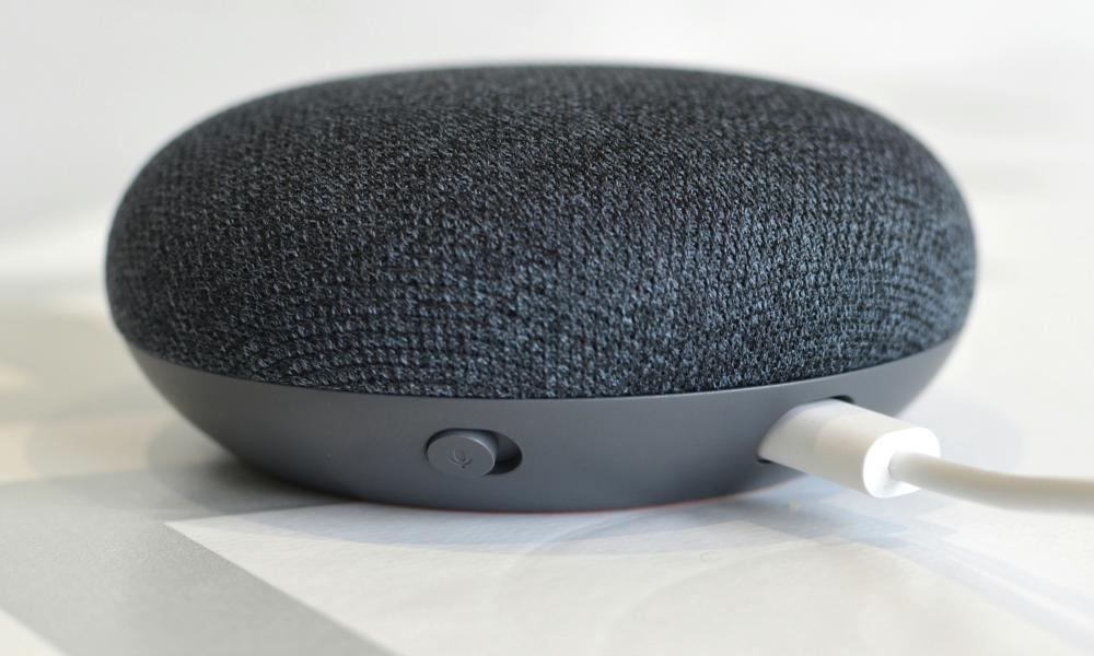 google review home Mini