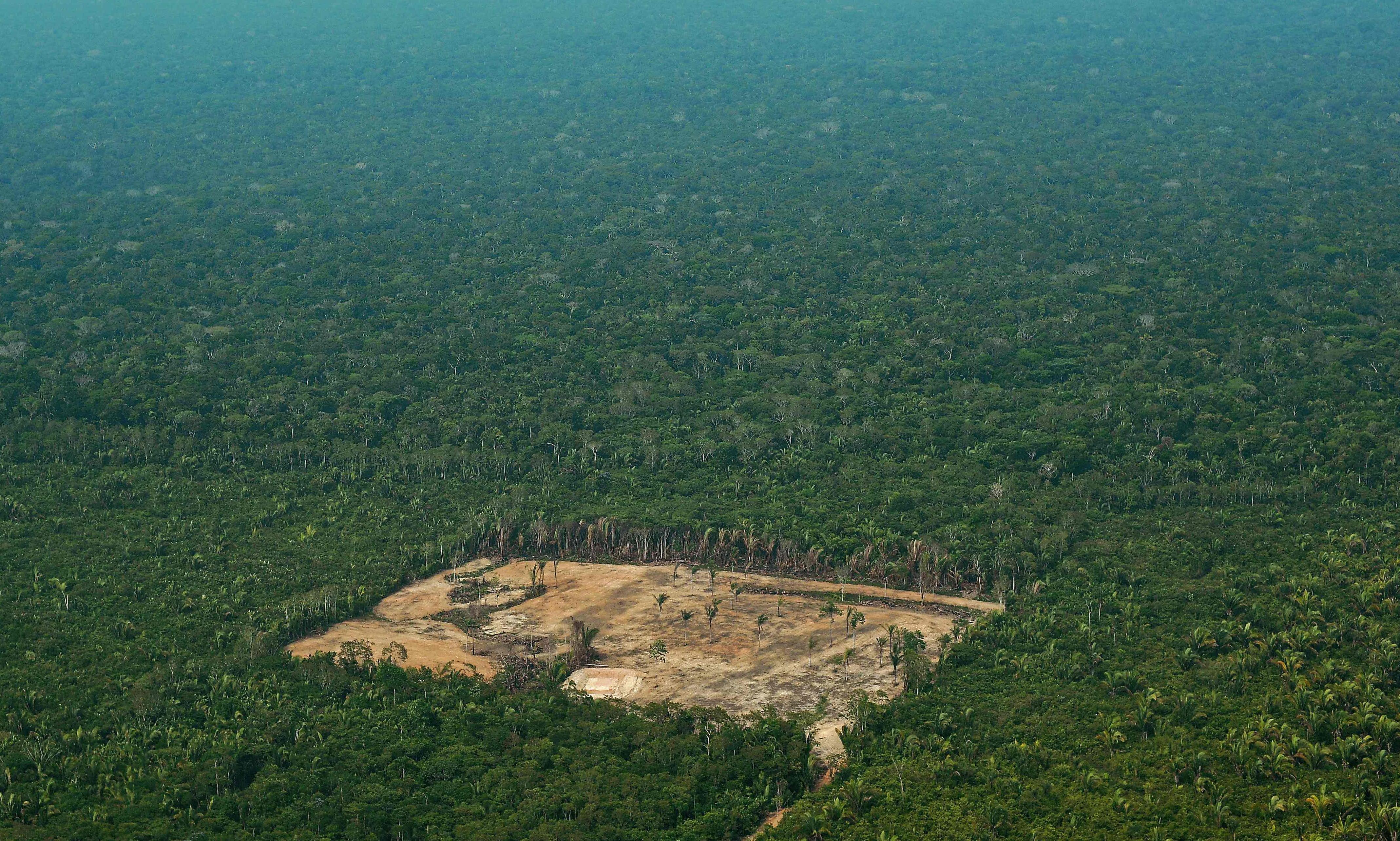 Amazon indigenous groups propose Mexico-sized 'corridor of life'