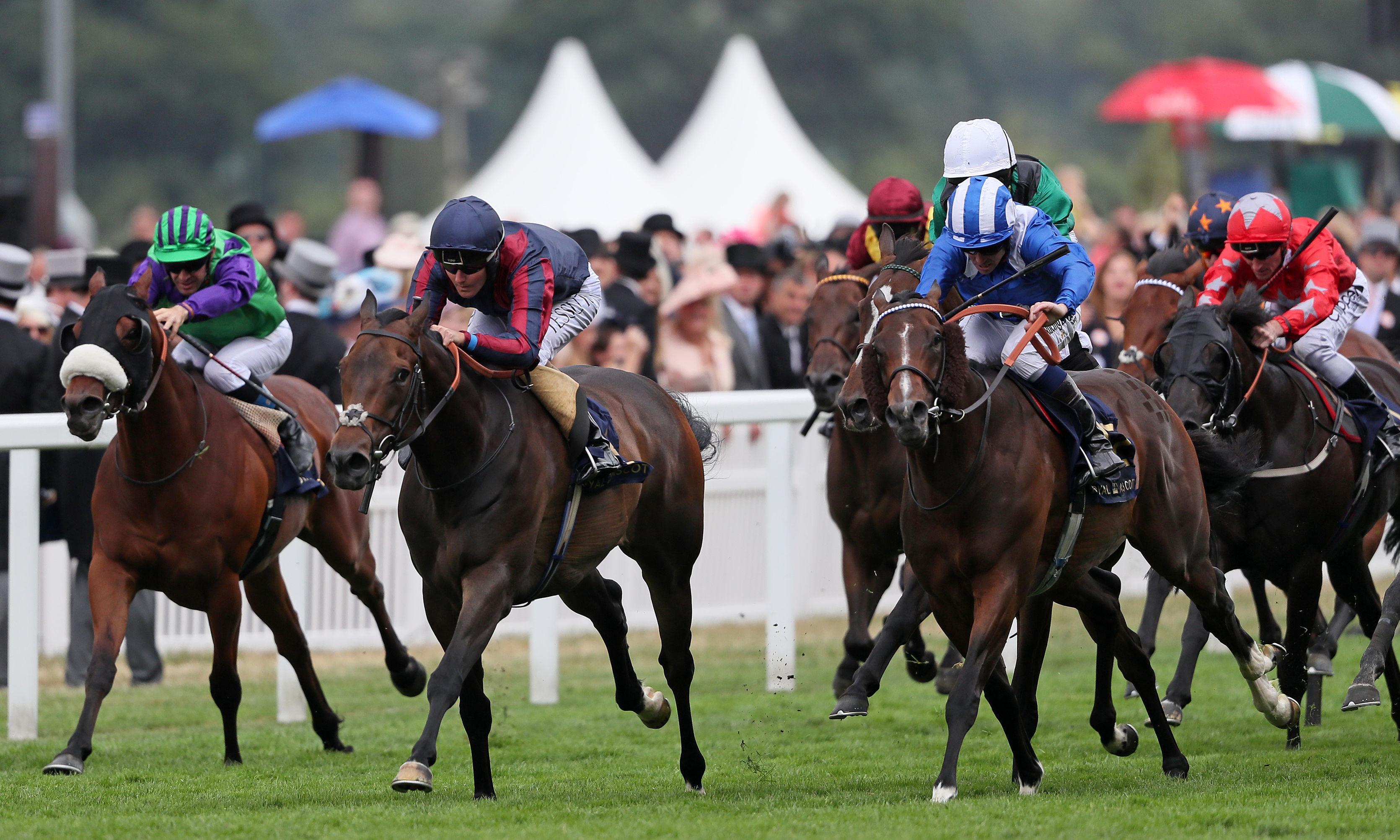 Talking Horses: Frankel's jockey Tom Queally seeks to end winnerless run