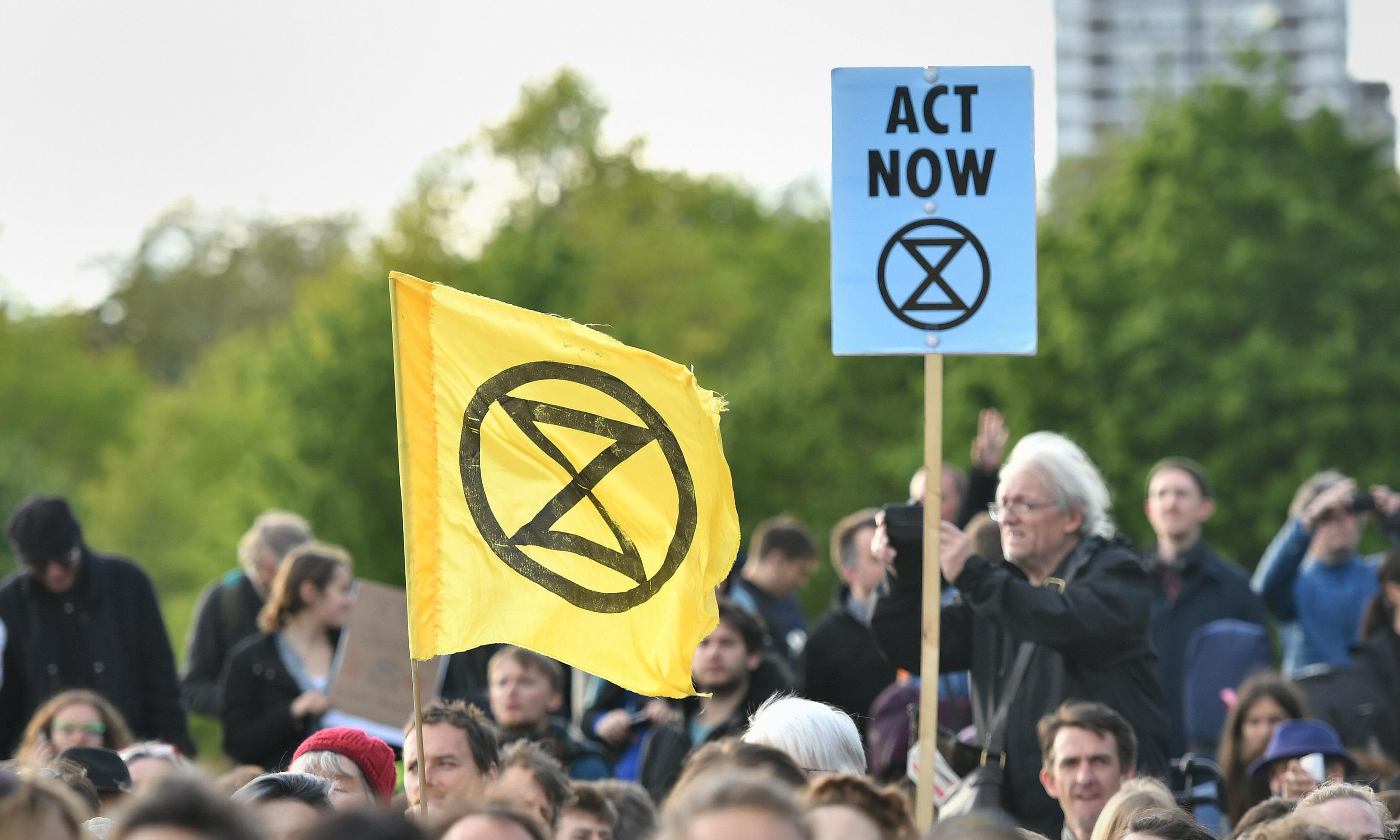 Extinction Rebellion protesters to stand in European elections