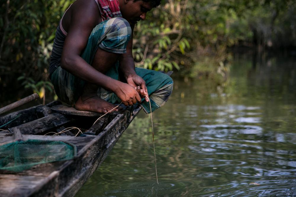 Moniral Islam Gazi in the Sundarbans forest