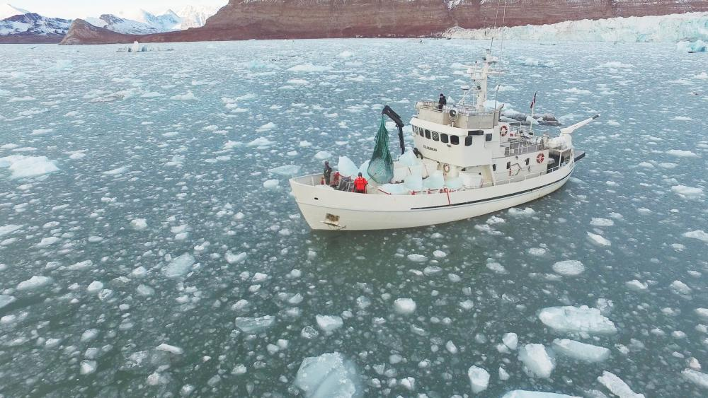 A boat carrying blocks of ice moves through icy seas