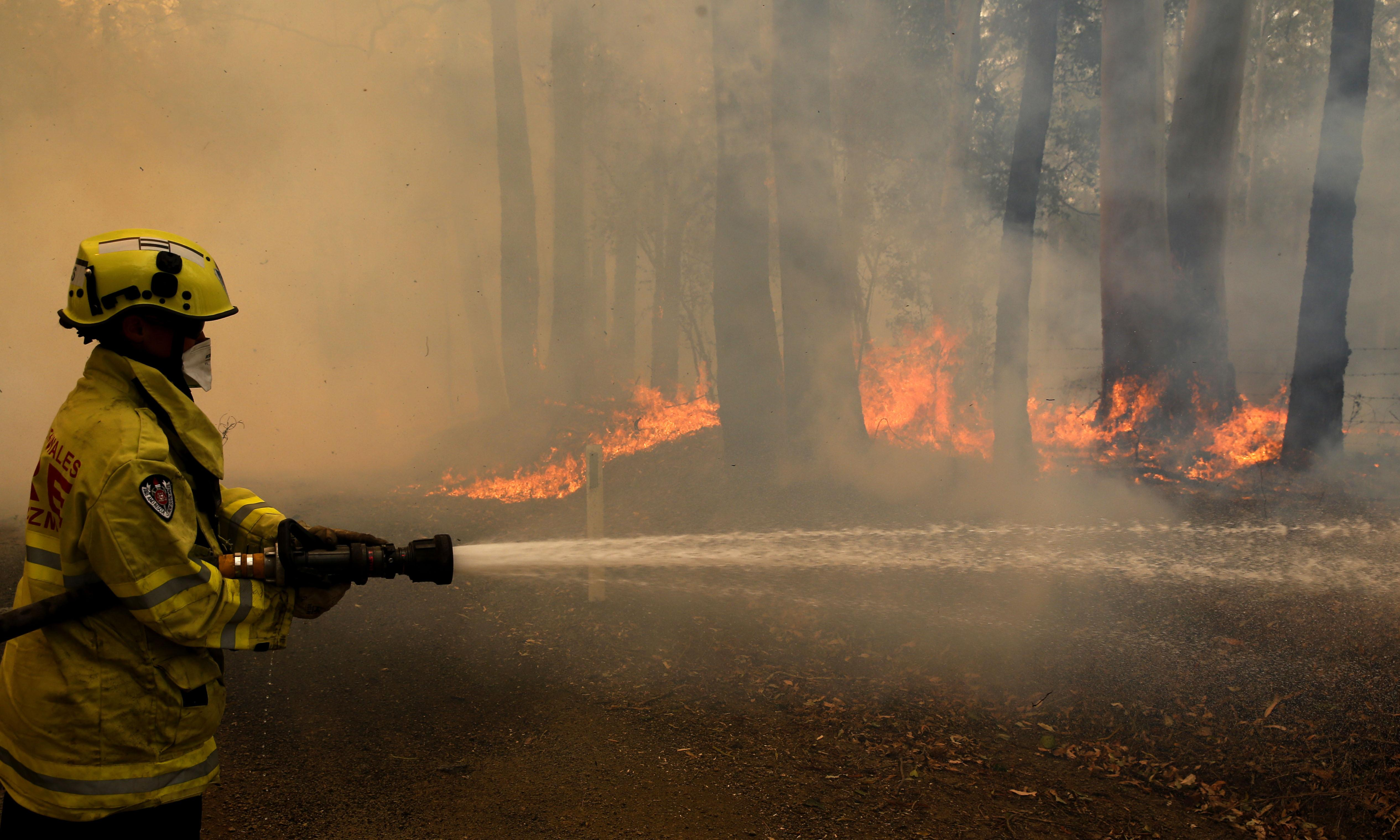 Factcheck: Is there really a green conspiracy to stop bushfire hazard reduction?