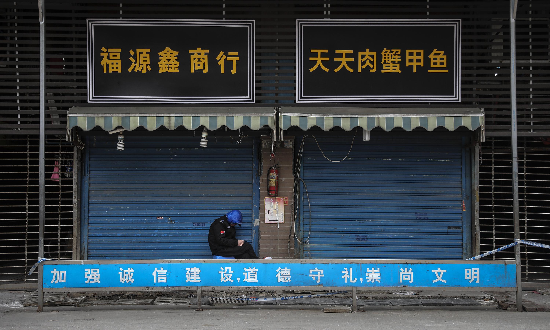 Animal trade in spotlight as China seeks source of coronavirus