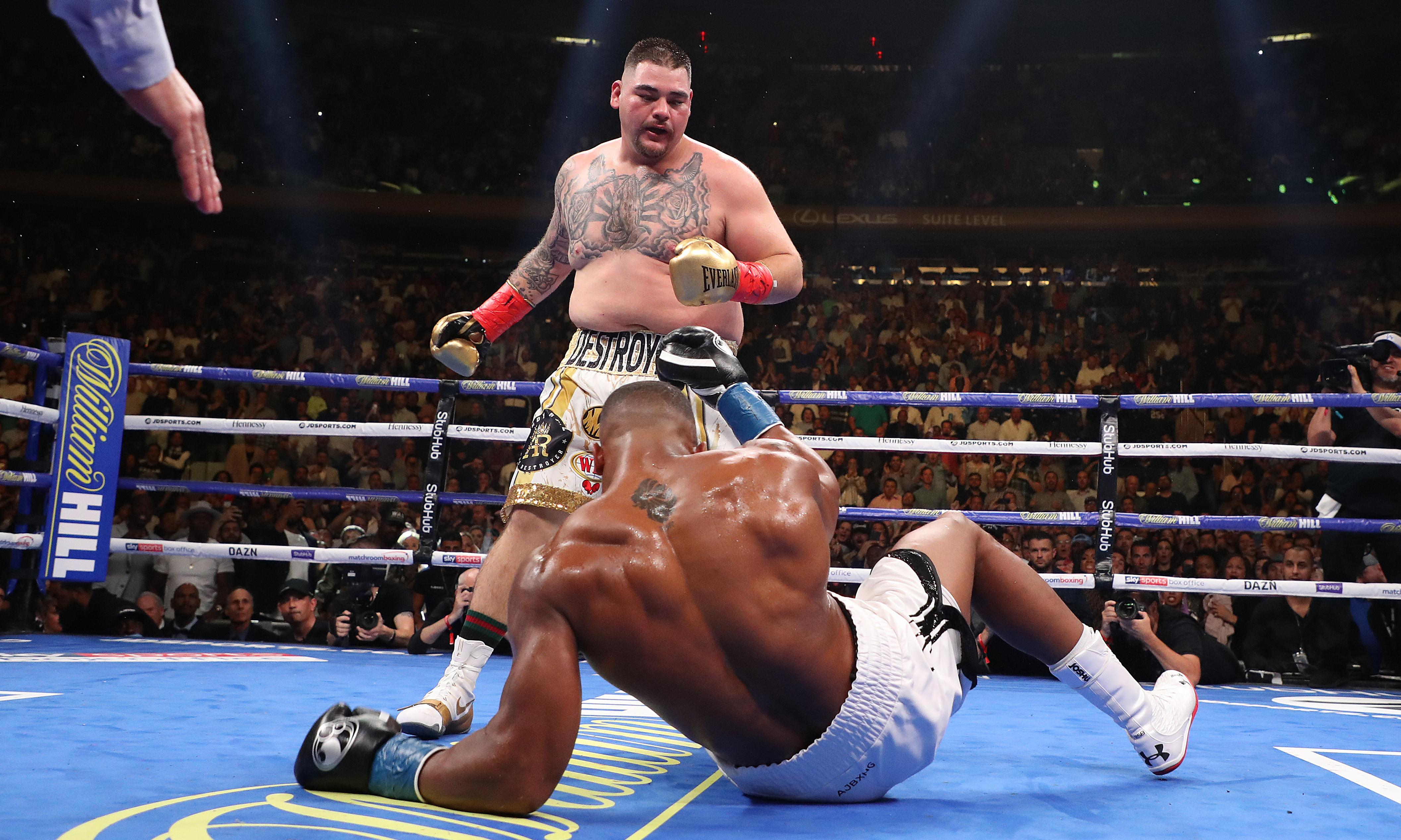 Andy Ruiz Jr: champion of the ring, and of tubby underdogs everywhere