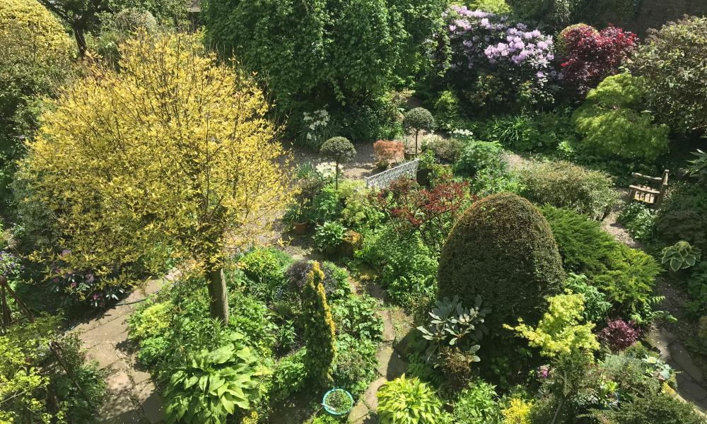 Small yet sprawling: Millgate House garden.