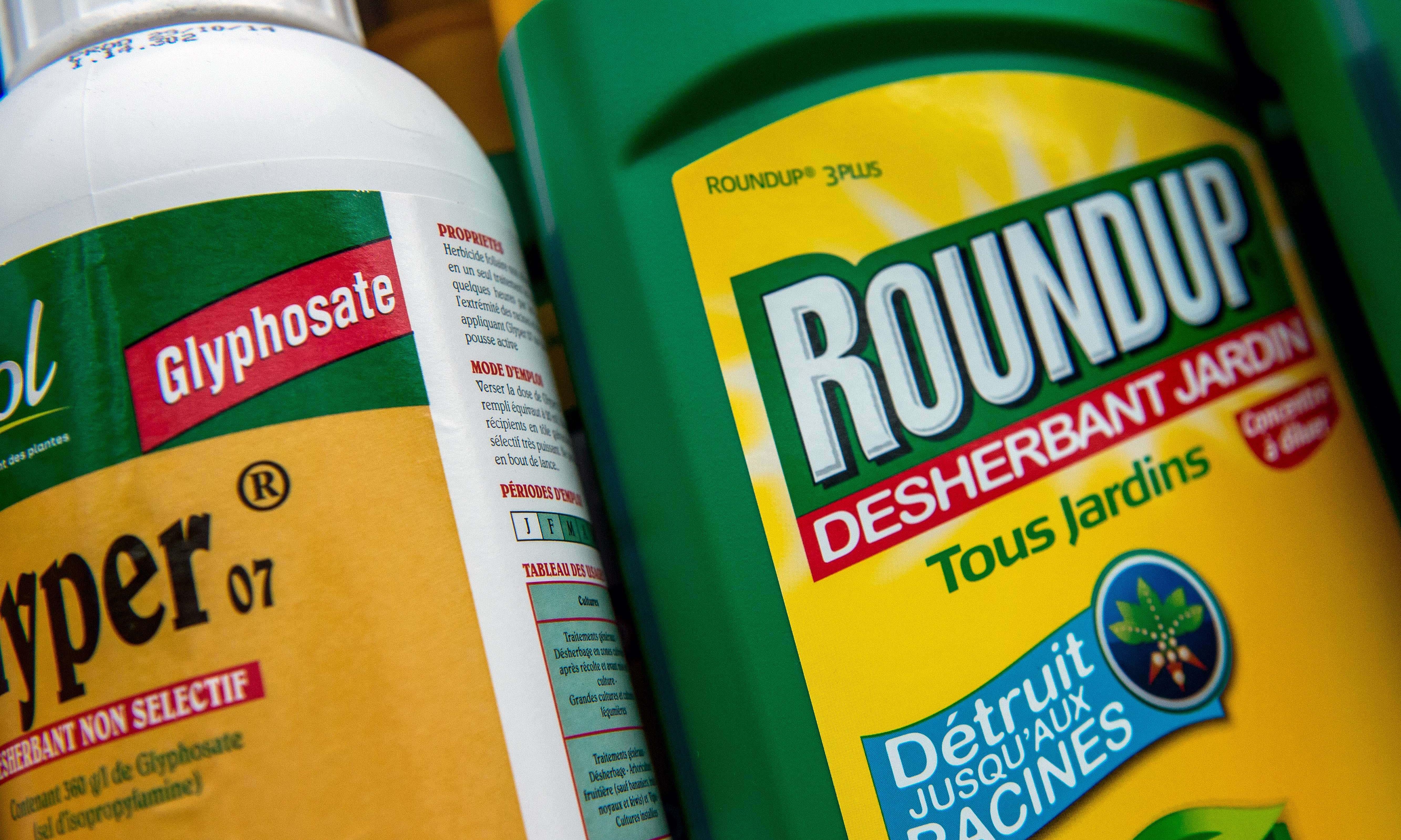 GMOs  - cover