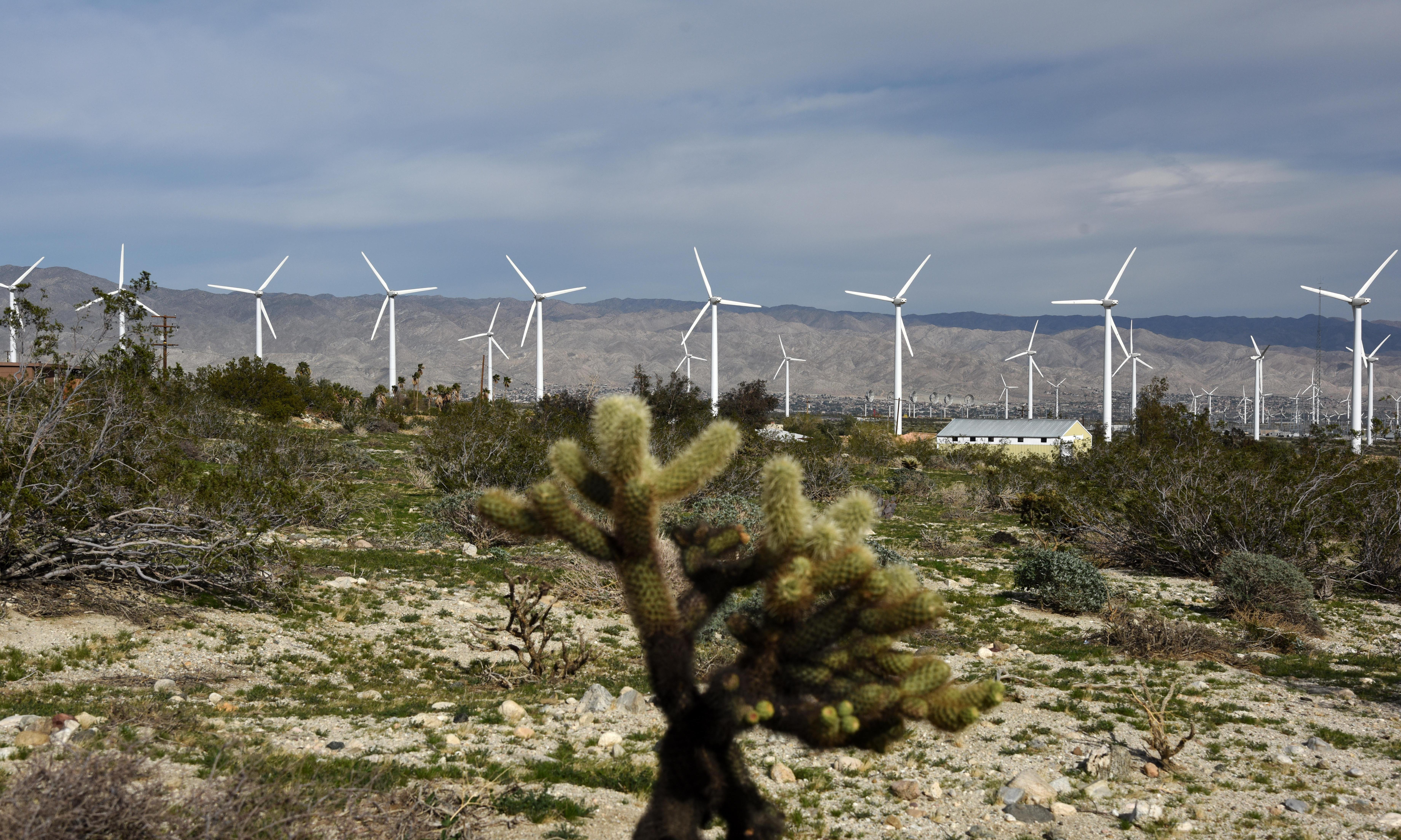 US generates more electricity from renewables than coal for first time ever