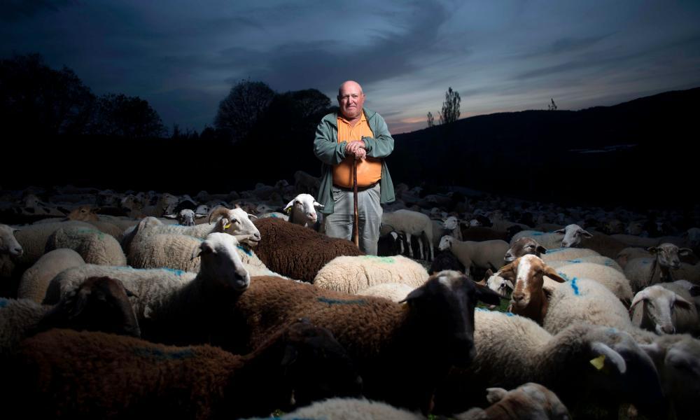 Spanish Ramon Montesinos Roman, a shepherd, poses with his flock of sheep in Ronda, on April 23, 2020 during the COVID-19 coronavirus pandemic.