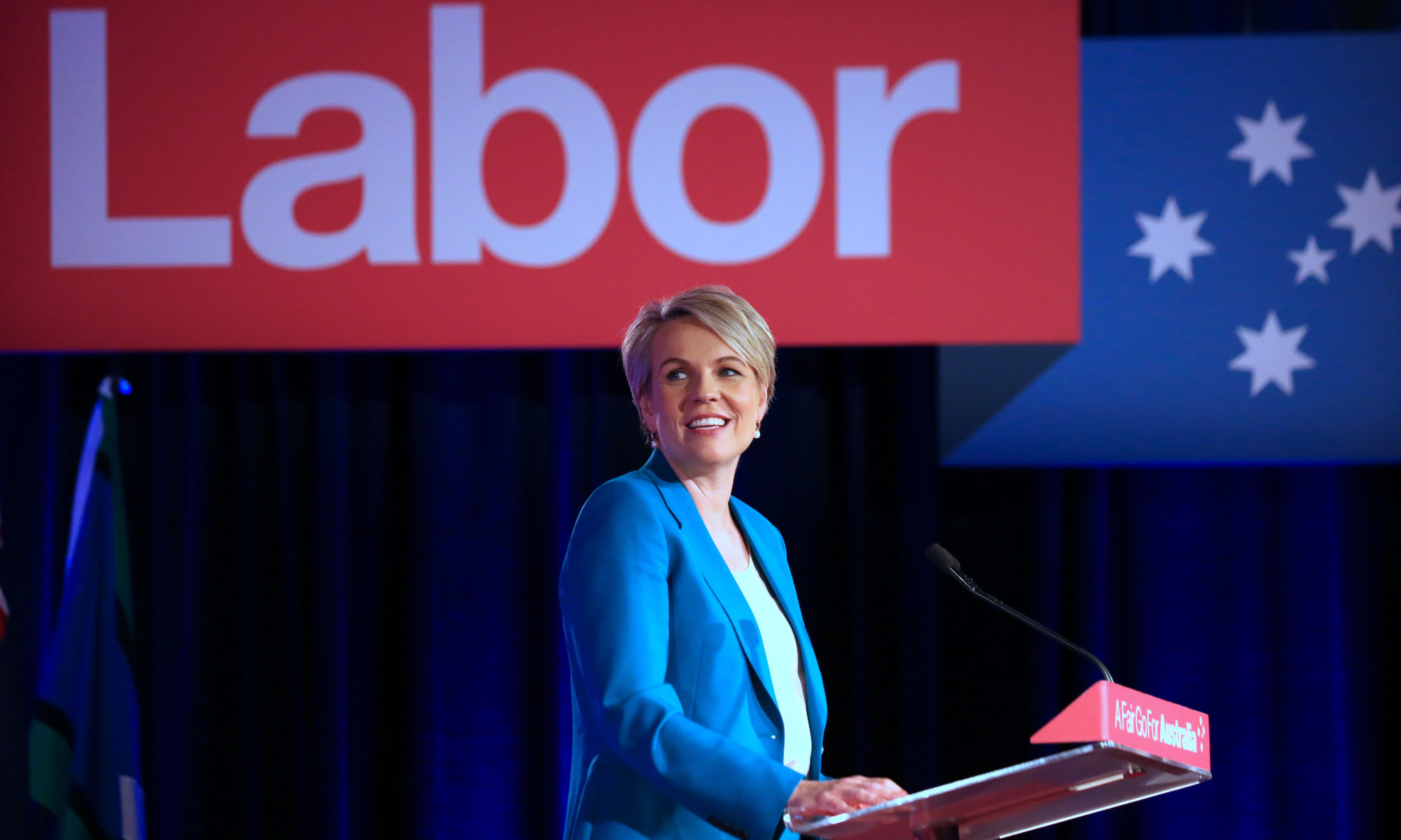 How does the Labor leadership ballot work?