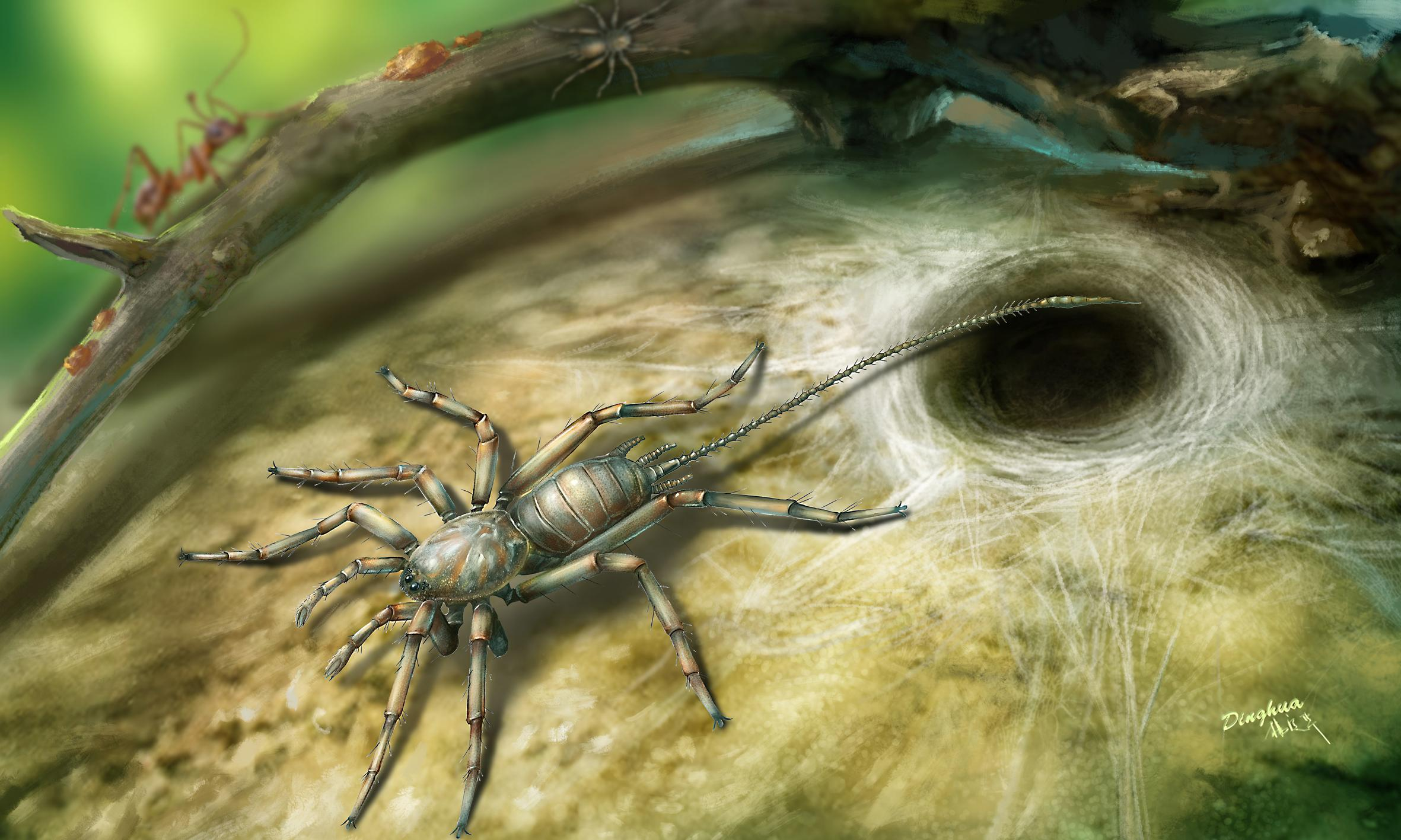 Very creepy crawlies: 'proto-spiders' with long tails discovered in amber