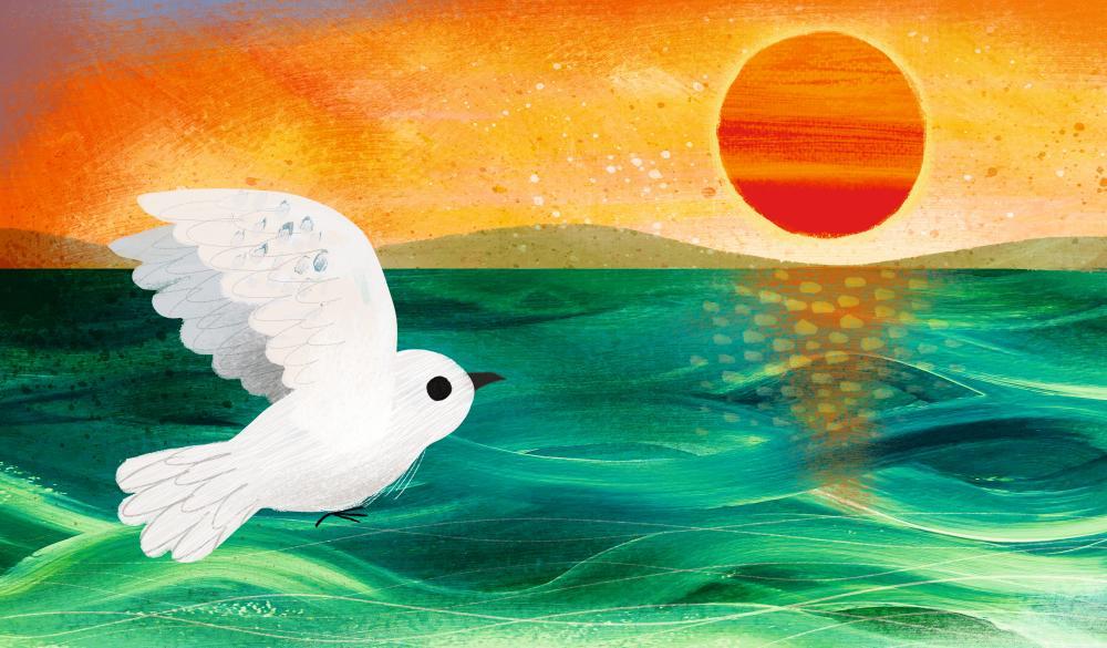 The 'thoughtful' Bird's Eye View by Frann Preston-Gannon