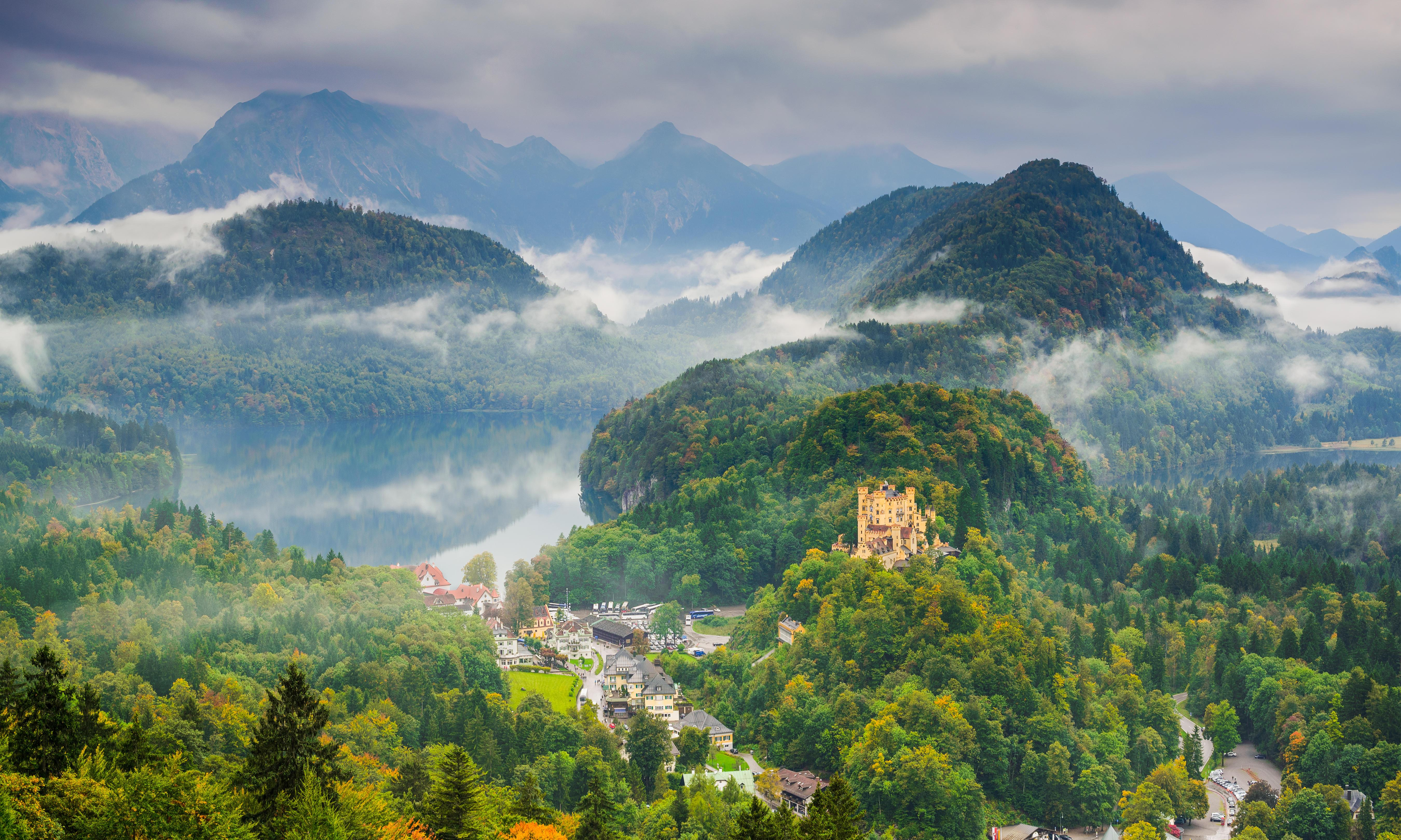 'Part of German soul' under threat as forests die