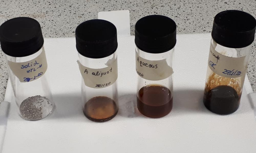 Fractions of Sargassum subjected to hydrothermal liquefaction. Liquid bio-oil can be further processed into fuel and a fertiliser precursor.