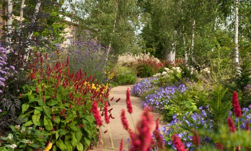 Seven of the UK's healing hospital gardens – in pictures