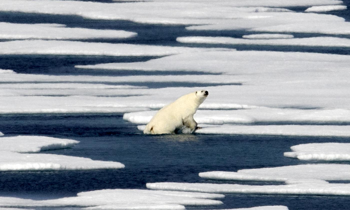 Leaked UN draft report warns of urgent need to cut global warming