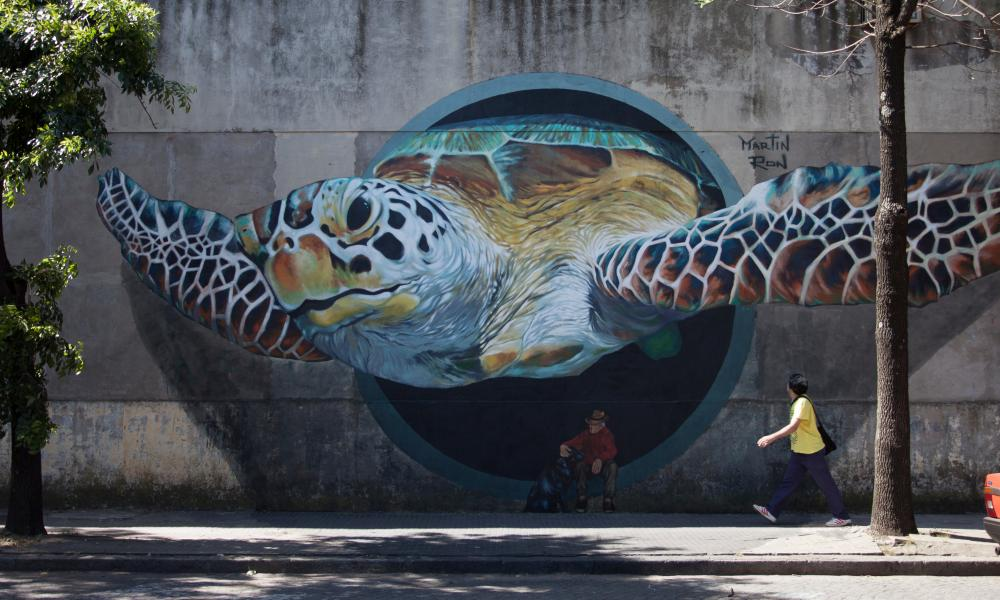 Mural by Martin Ron, Buenos Aires