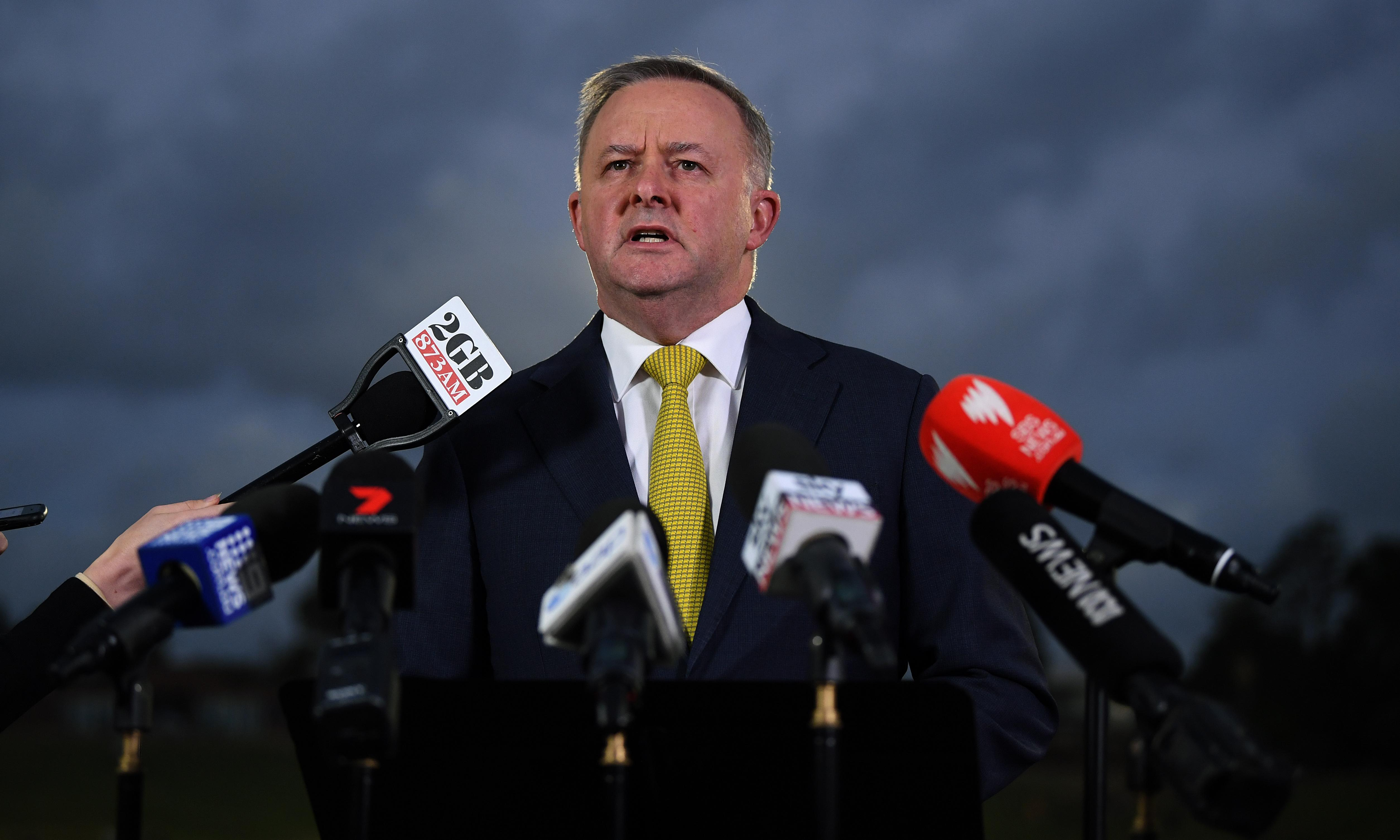 Anthony Albanese refuses to give Labor position on Coalition's 'big stick' energy laws