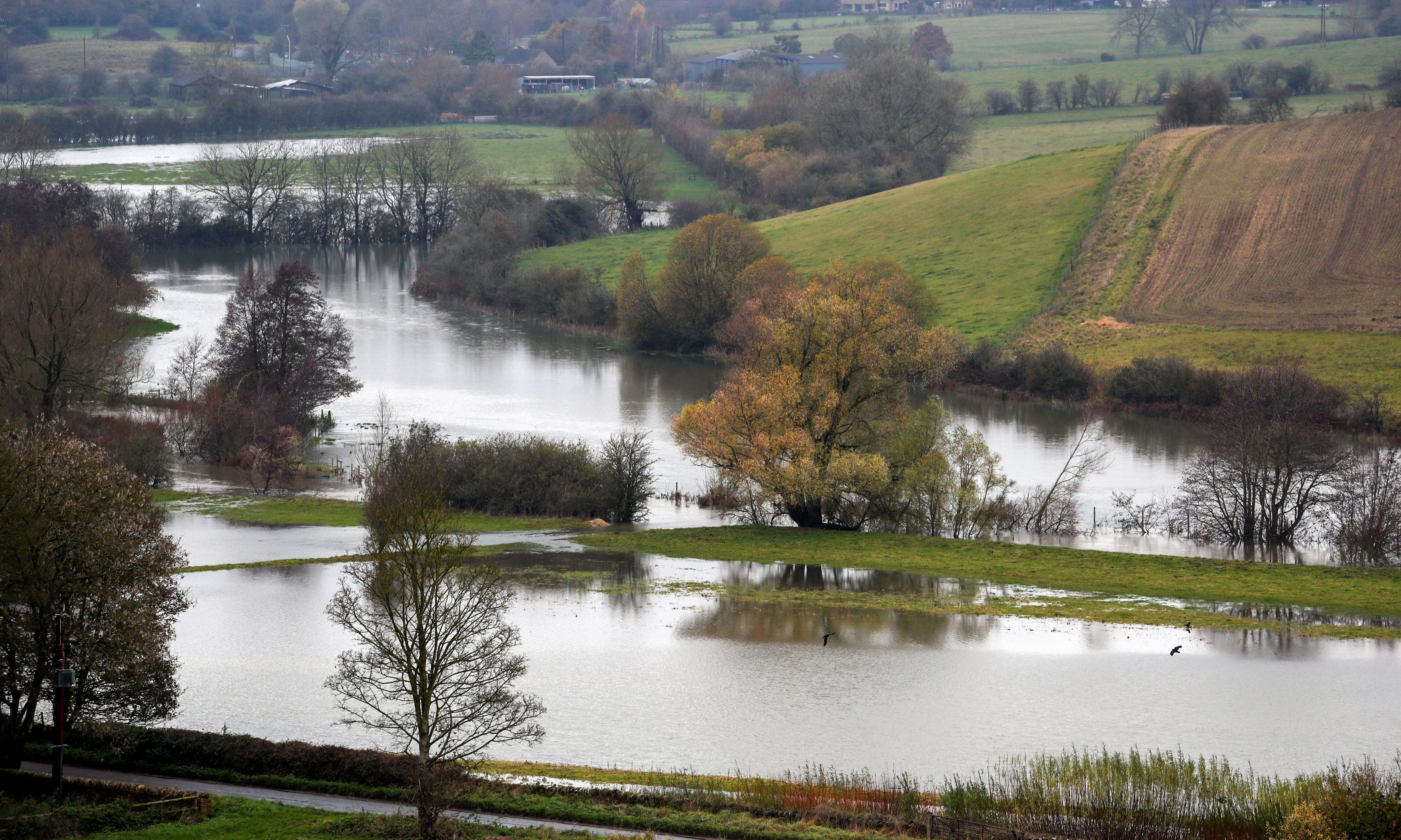 UK weather: two killed after tree falls on car in Cotswolds