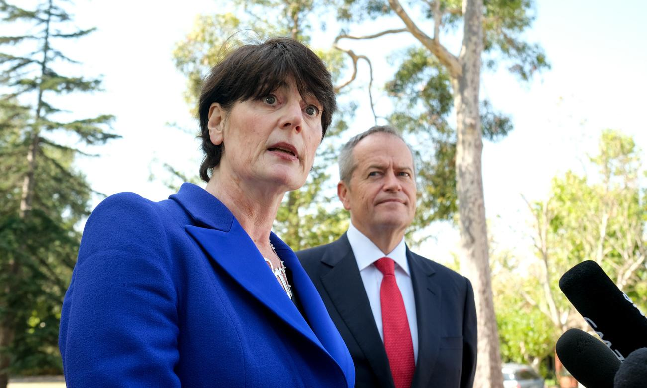 Labor replaces Higgins candidate with high-profile barrister Fiona McLeod