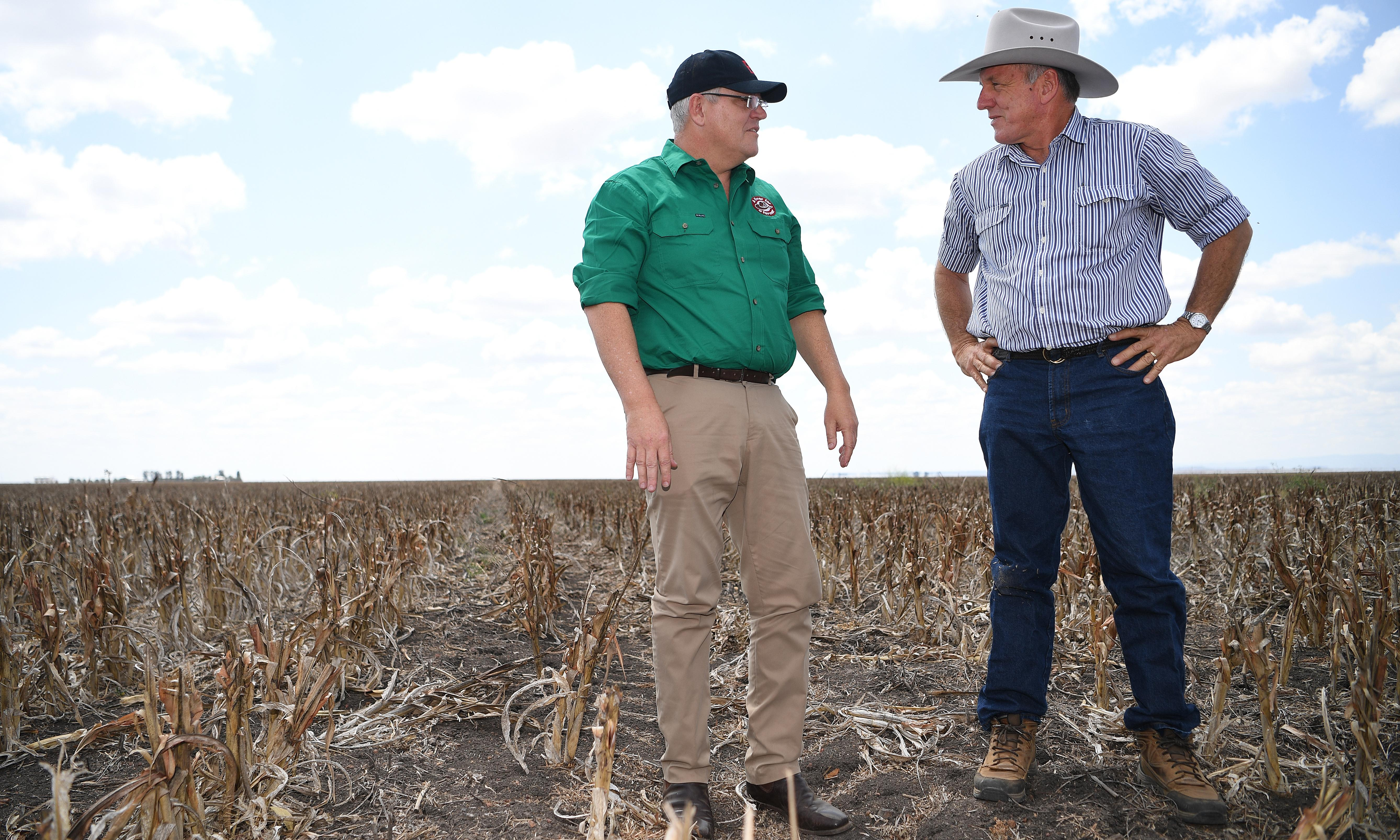 Coalition to unveil $1.5bn of drought relief in a bid to stem anger in the bush