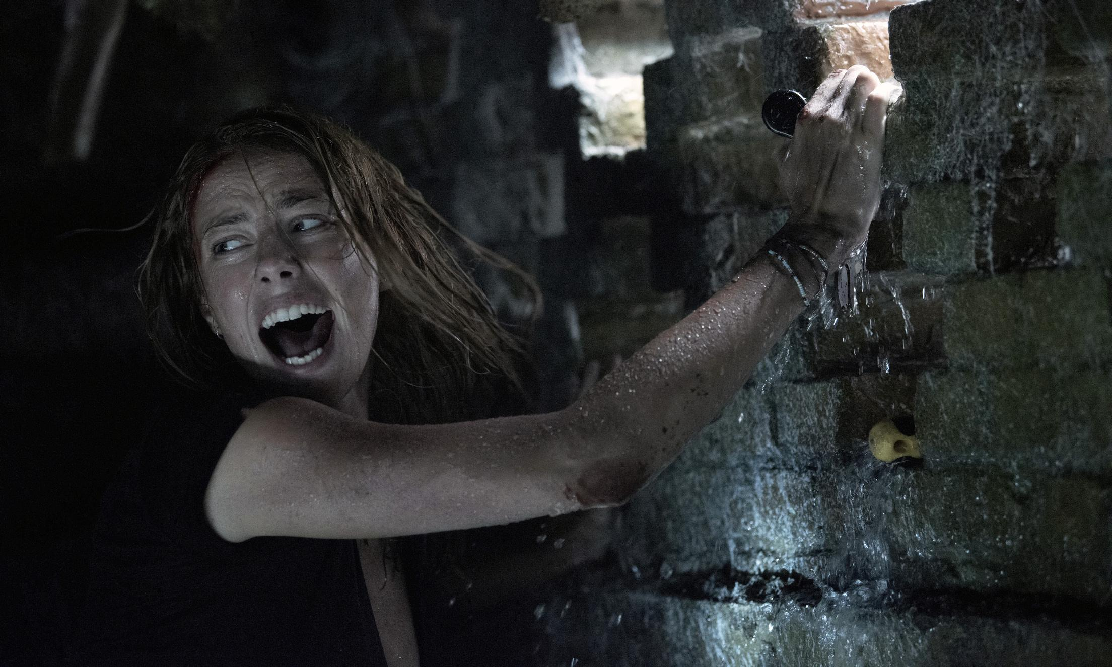 Crawl review – brutal alligator horror is a snappy summer surprise
