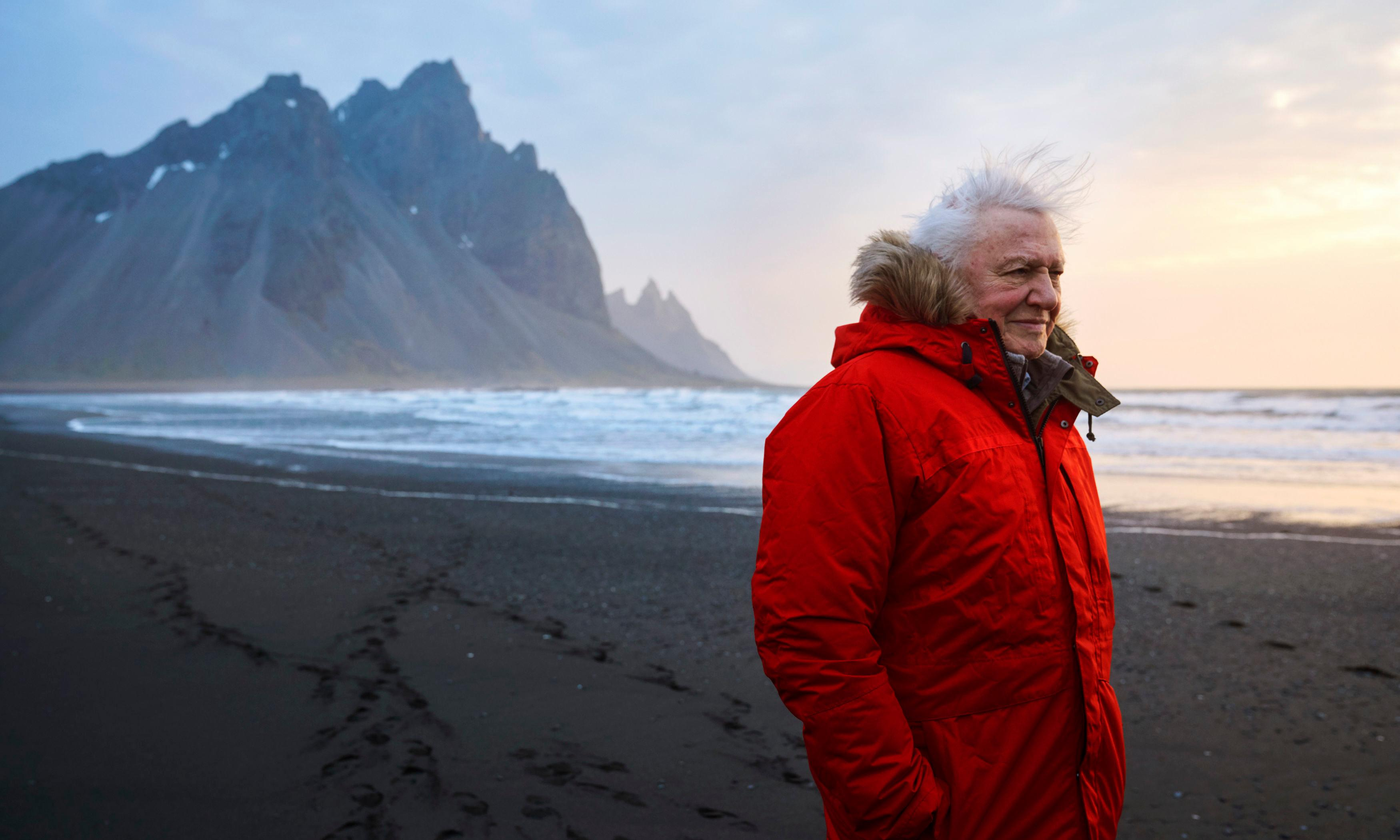 Seven Worlds, One Planet: conservation is the key to new Attenborough series