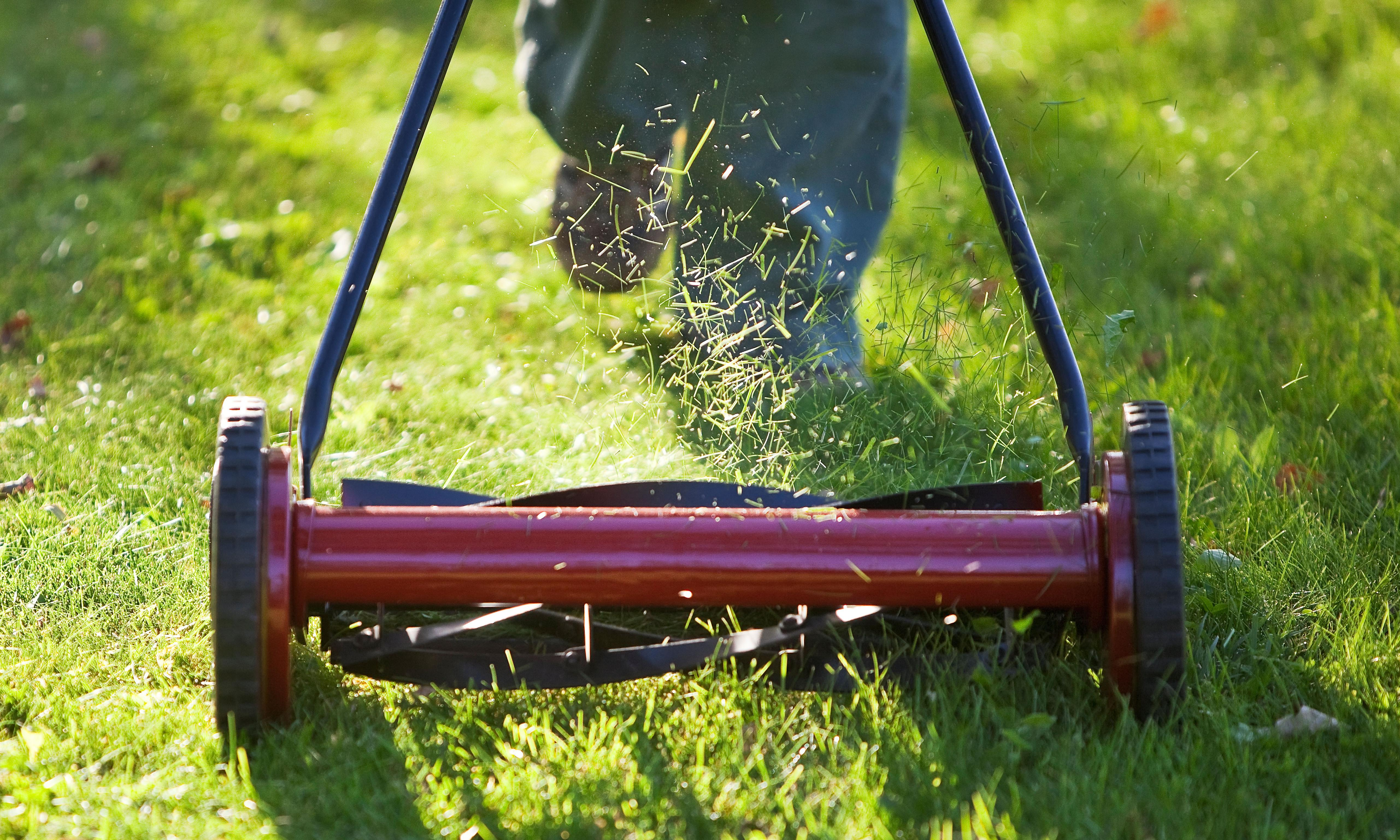 Laying down the Strava gardening gauntlet