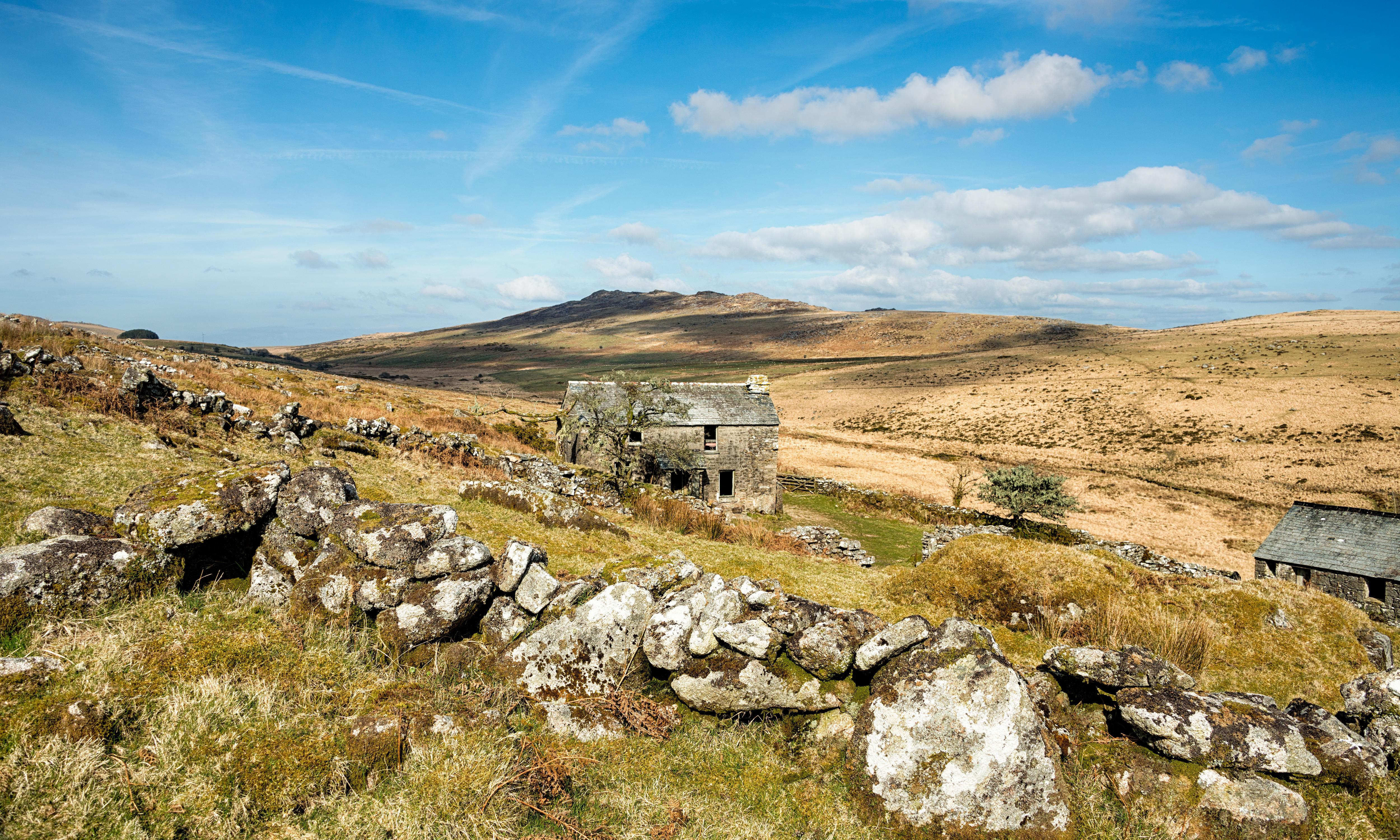 Country diary: a rare blue sky colours our waterlogged moorland trek
