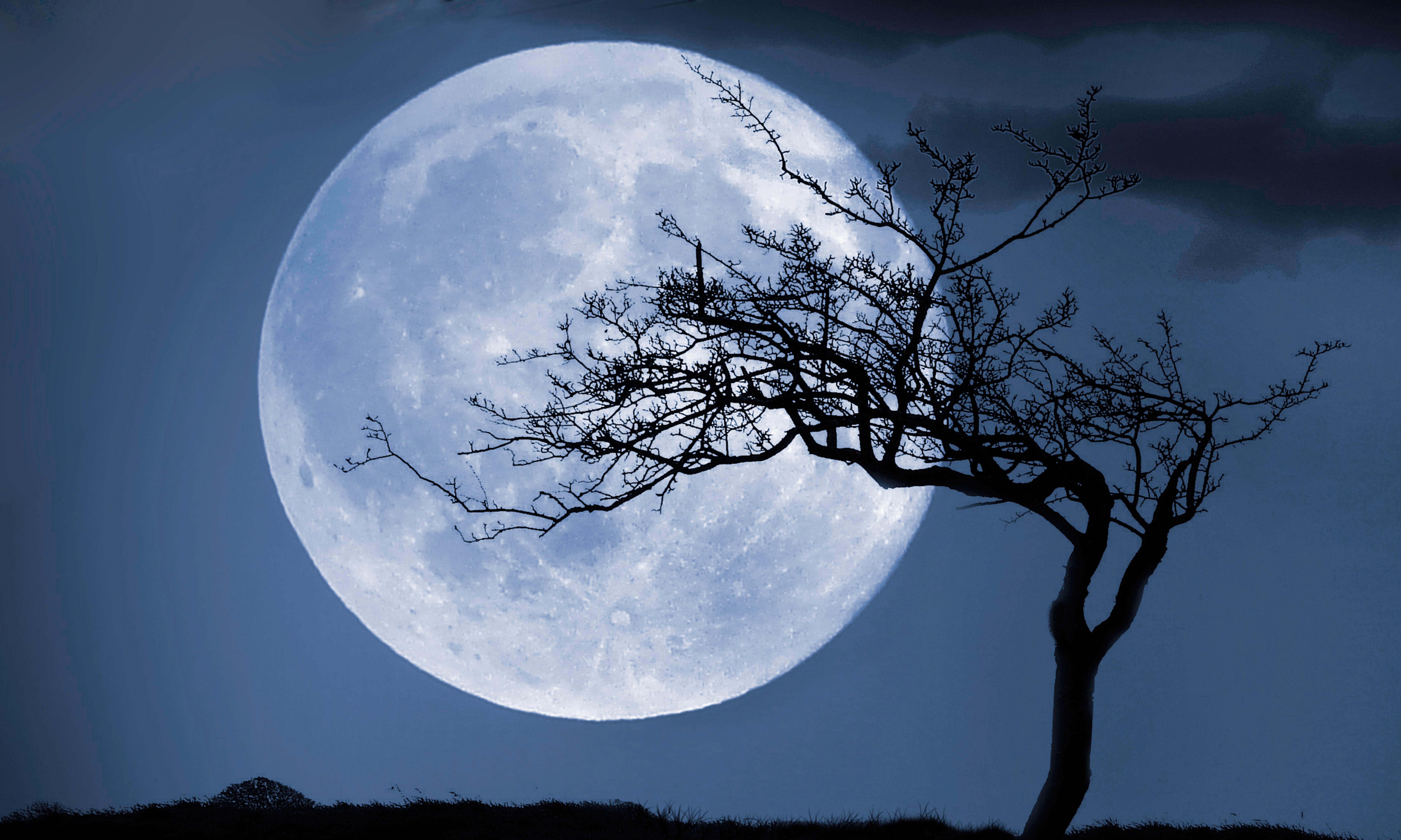 What is the first planet from the Sun to have a moon? The Weekend quiz