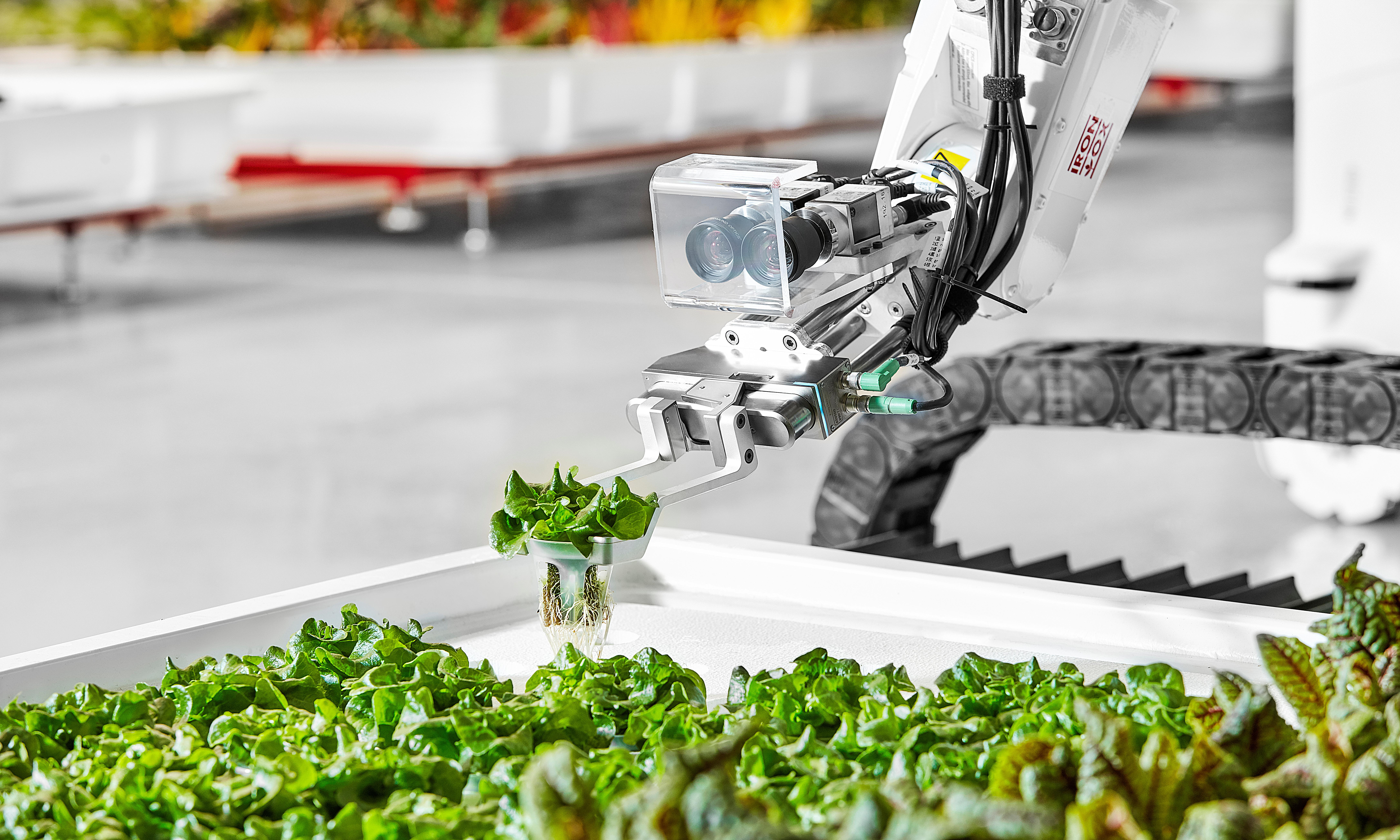 America's first autonomous robot farm replaces humans with 'incredibly intelligent' machines
