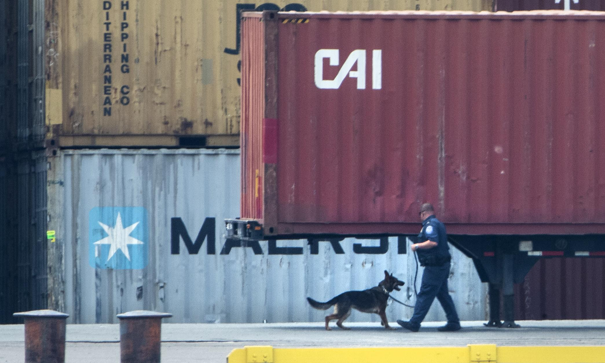 More than $1bn worth of cocaine seized from ship at Philadelphia port