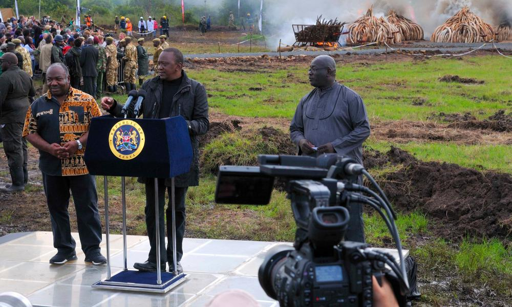 Uhuru Kenyatta, Kenyan President (centre) and the President of Gabon Ali Bongo Ondimba (left) seen in conversation with media as illegal ivory seized by officials, from poachers is set on fire on 30 April 2016 in Nairobi National Park, Kenya.