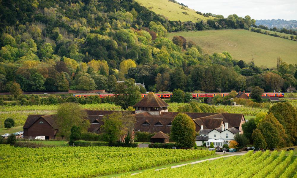 Denbies Estate and hotel is near A train passes the winery at Denbies Wine Estate near Dorking, Surrey