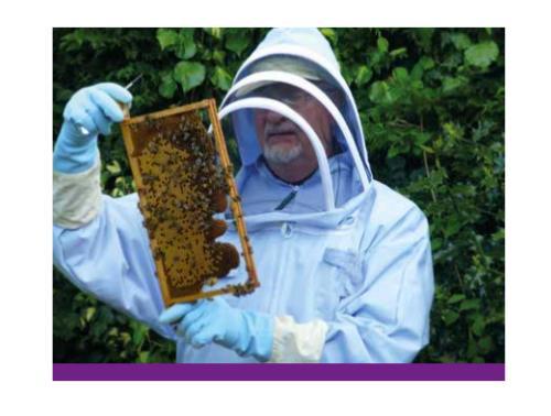 A beekeeper in Ukip's manifesto.