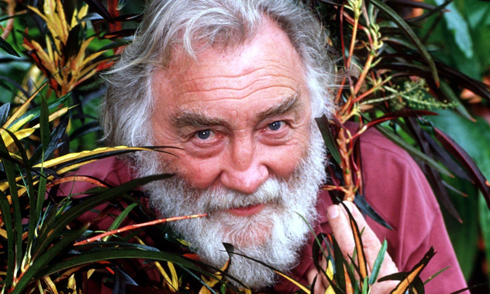 David Bellamy obituary
