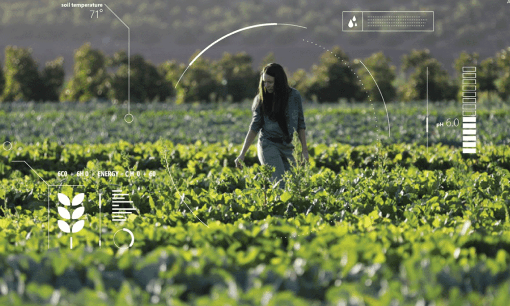 Image of women walking through a farm field, but with a vague data overlay