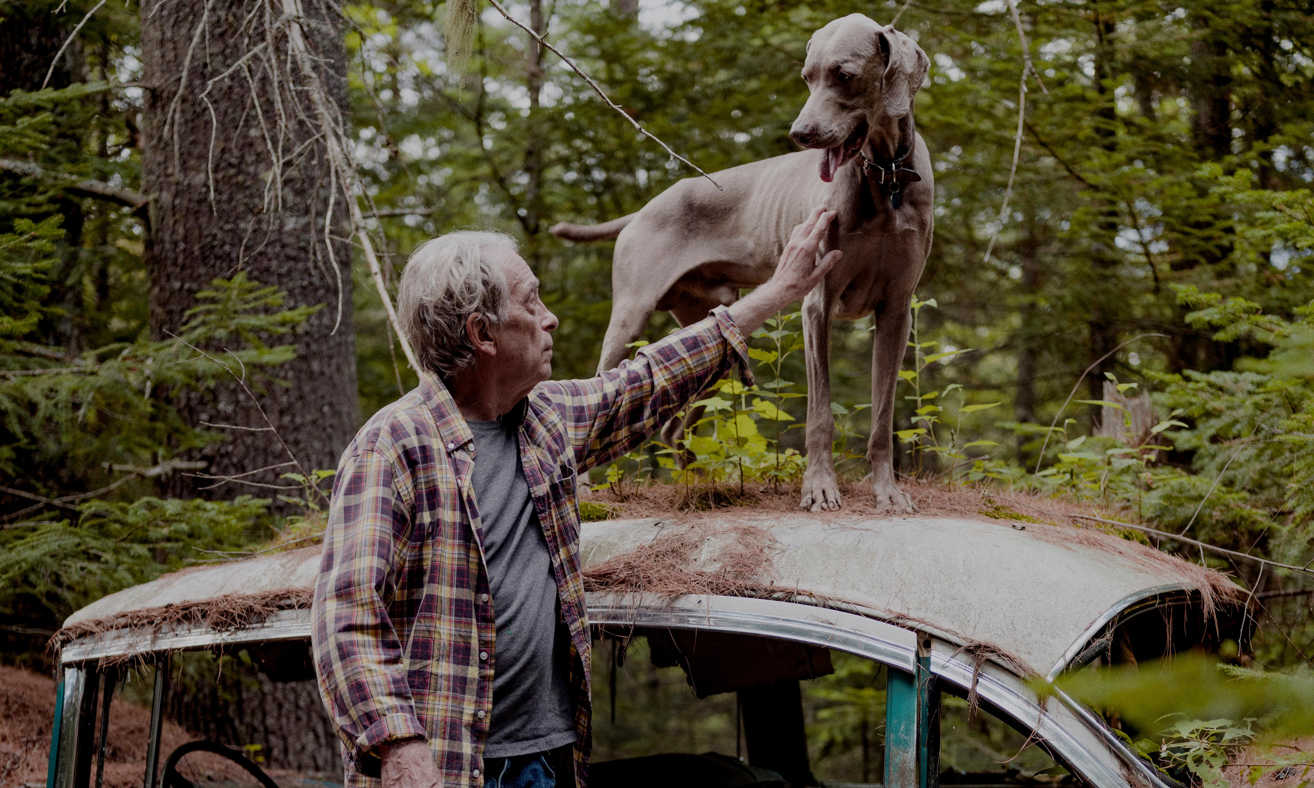 William Wegman: 'Weimaraners are serious and try hard. They're spooky and shadowy'