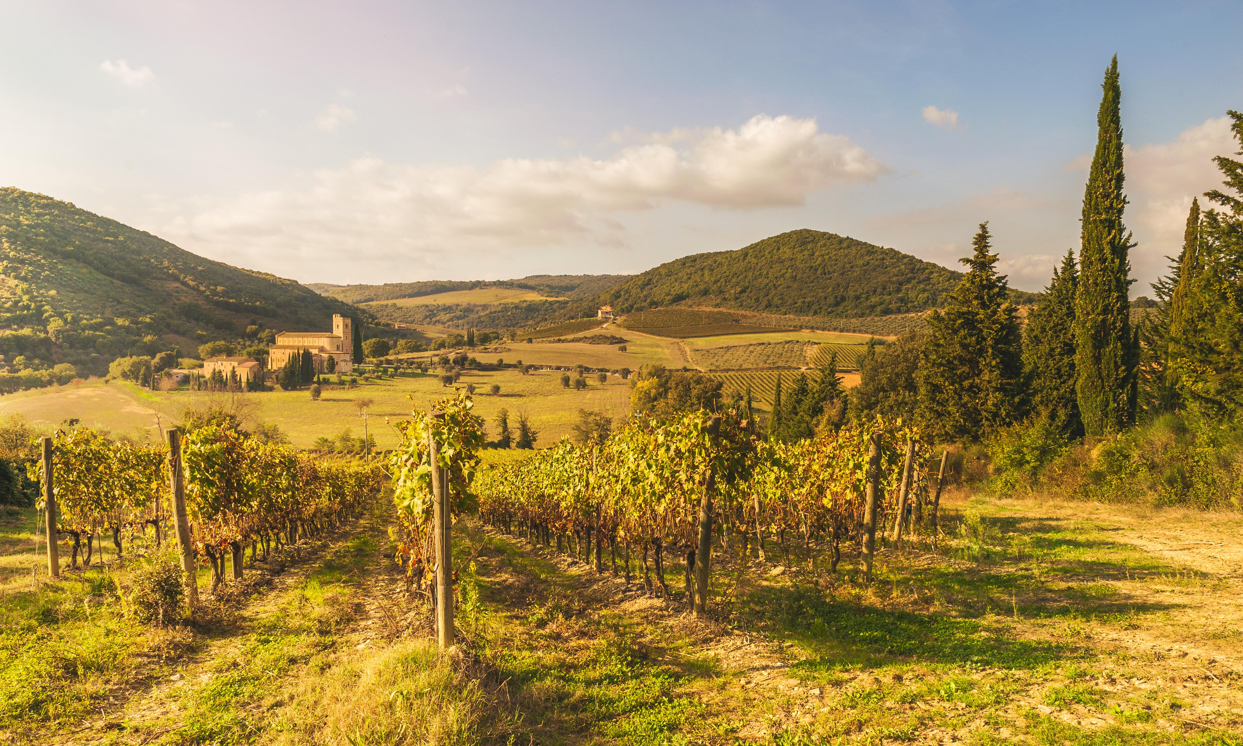 The Da Vinci road: walking through Tuscany