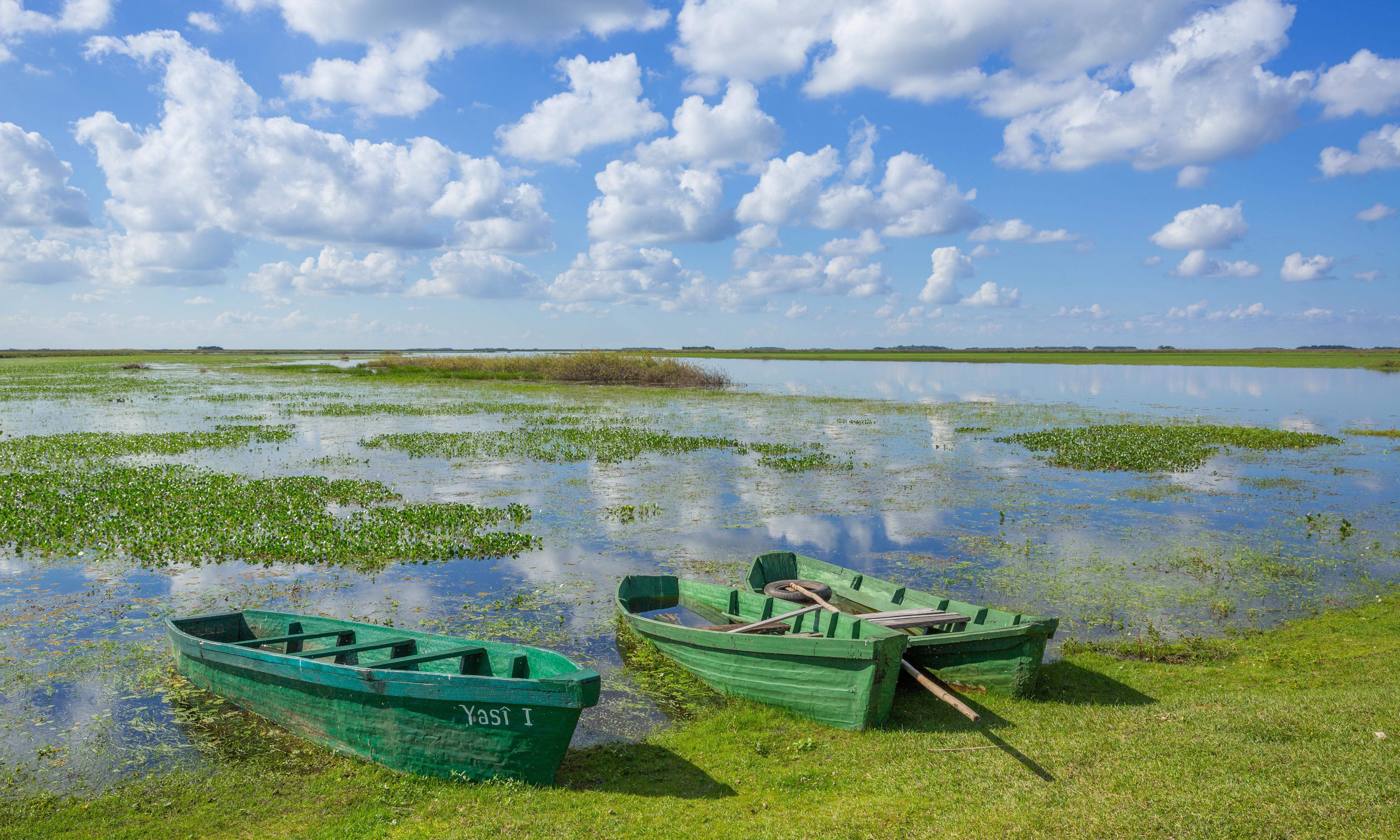 Call of the wild: eco adventures in Argentina's Iberá wetlands